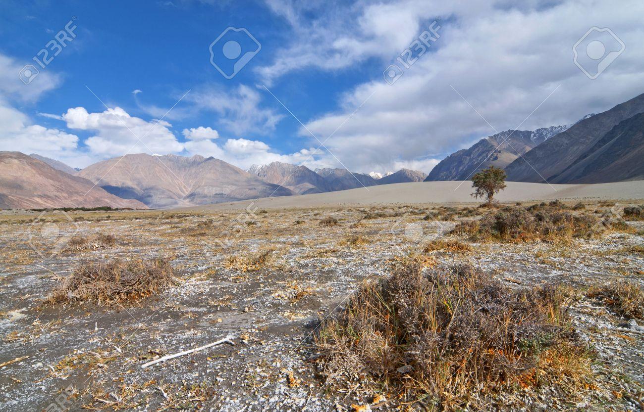 scene of himalayan desert landscape Stock Photo - 17046110