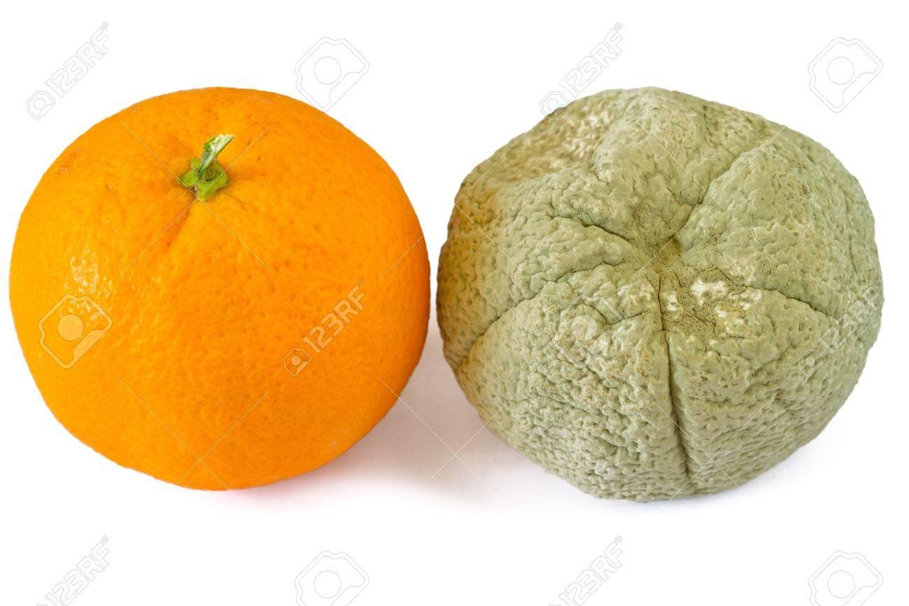 Rotten and fresh orange Stock Photo - 13355314
