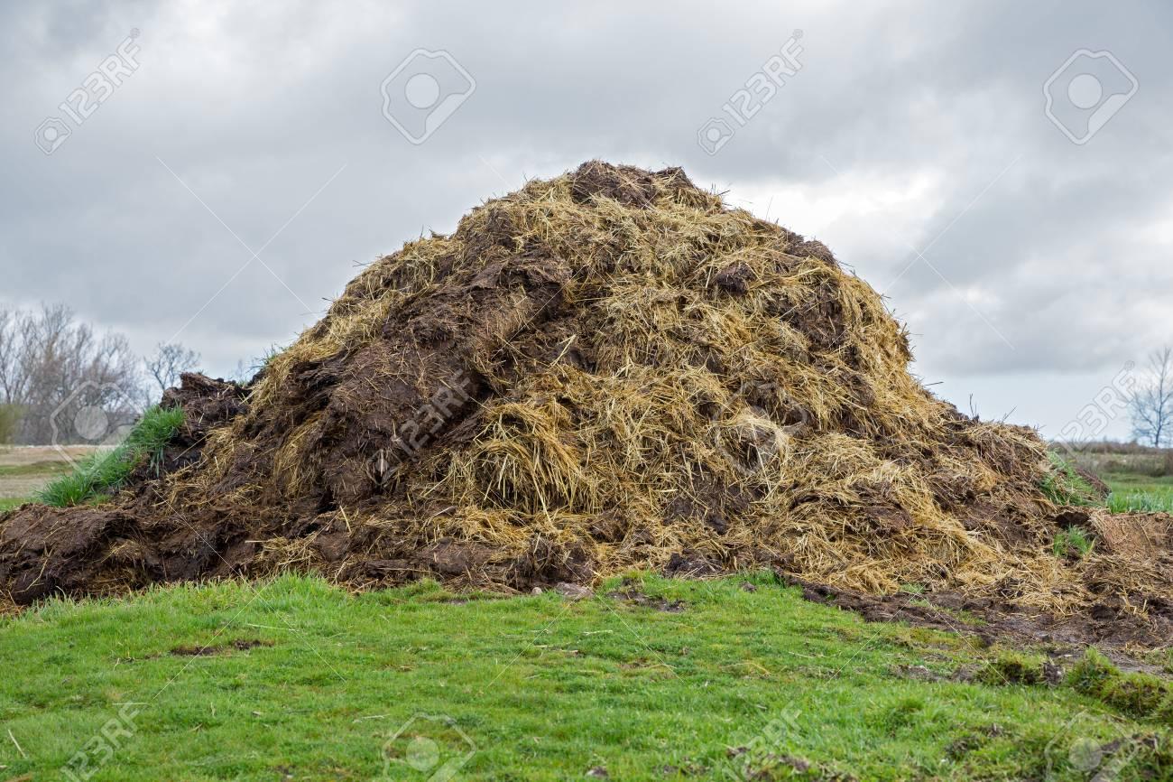 Pile of Fertilizer Stock Photo - 19012836