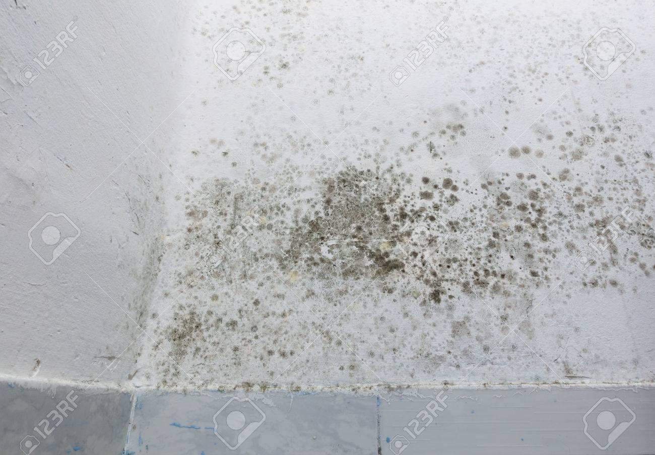 Feuchte Flecken Auf Einer Wand Uber Sockelleiste Lizenzfreie Fotos