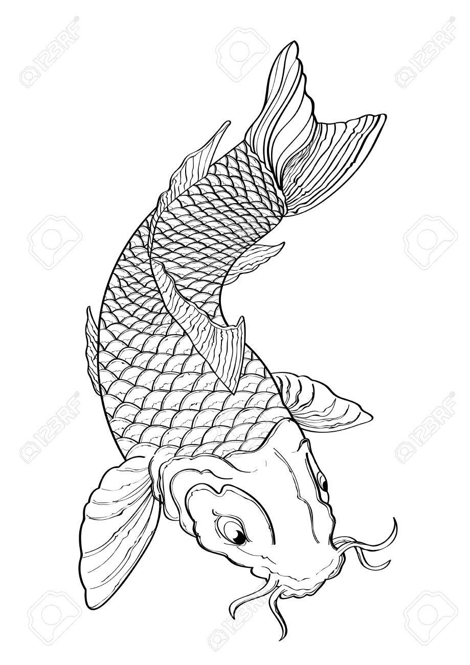 Vector Illustration Graphic Background Koi Fish Tattoo Japanese