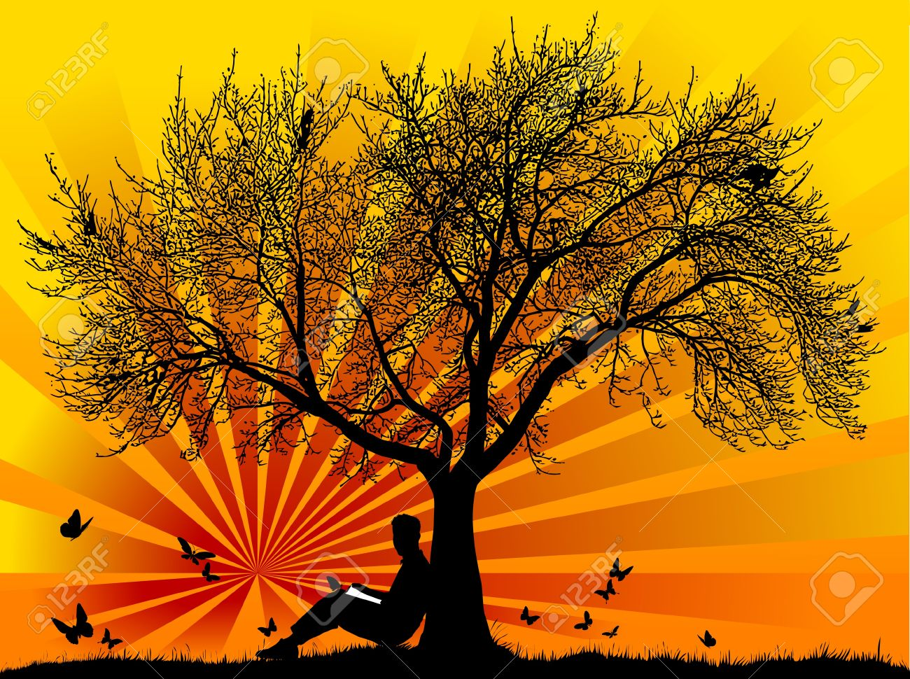 Silhouette of a man with butterflies with a sunset or sunrise; Stock Vector - 9591430