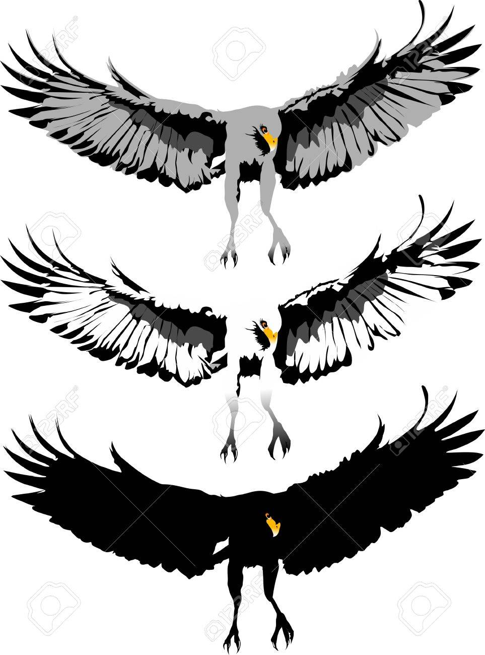 Eagle Claws Clipart Eagle Claws