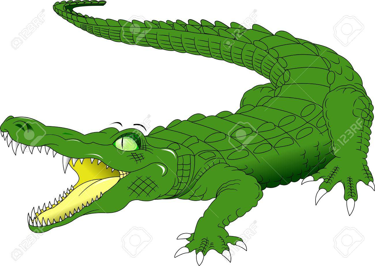 nile crocodile crocodylus niloticus wild african animal side rh 123rf com Nile Crocodile Head Nile Crocodile Cake