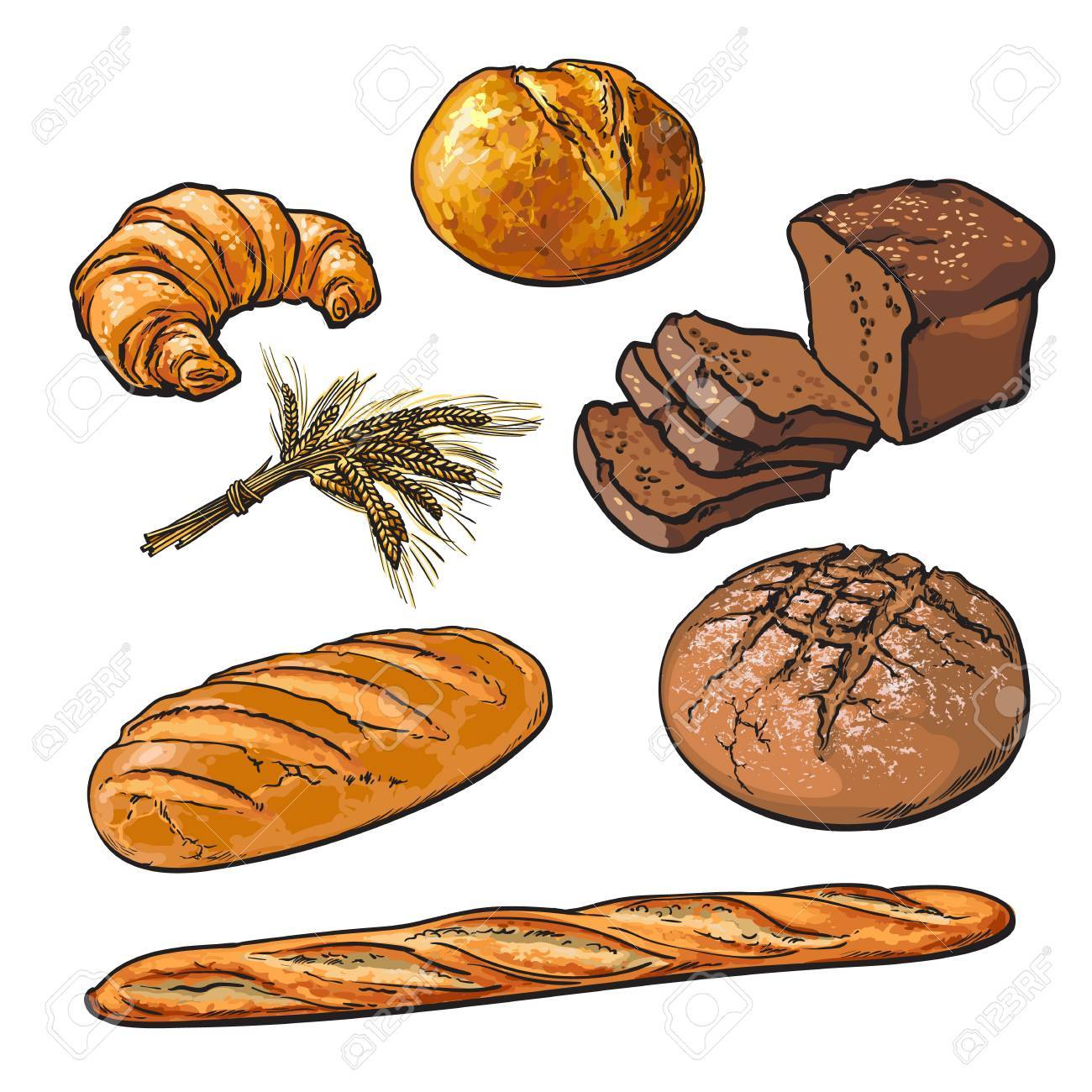 Set Bread Products Pastries Vector On A White Background Sliced Loaf French Baguette