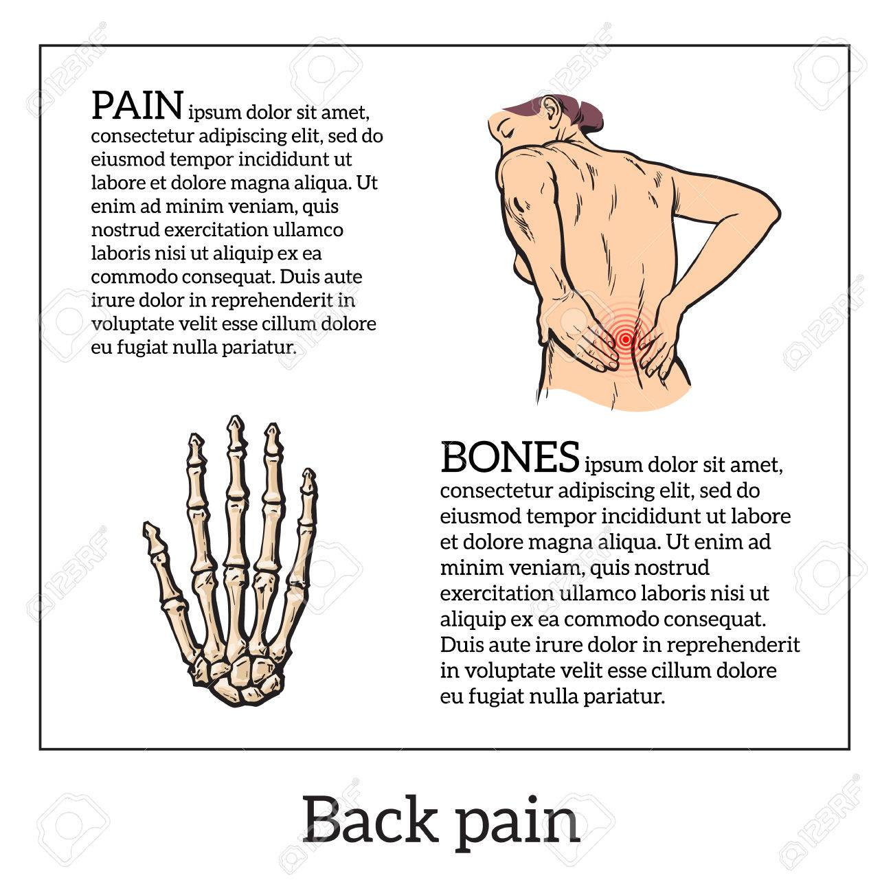 Lumbar Pain In A Woman Back Pain In A Human Vector Outline Sketch