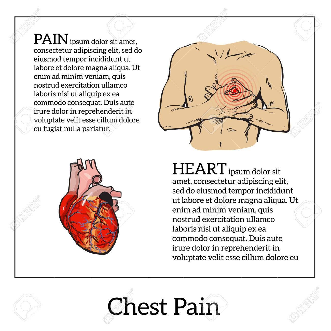 Información Sobre El Dolor Del Corazón, Dolor En El Pecho En Los ...