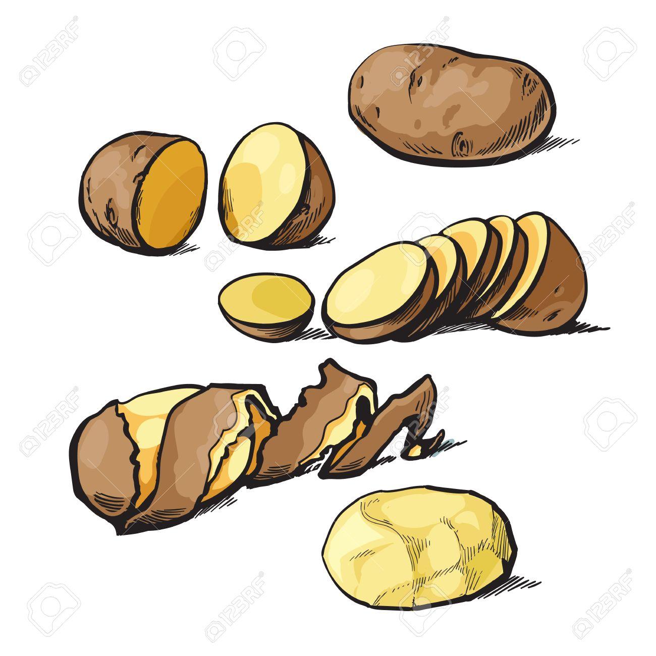 Conjunto De Limpieza Patatas Y Corte Dibujo Vectorial Ilustración