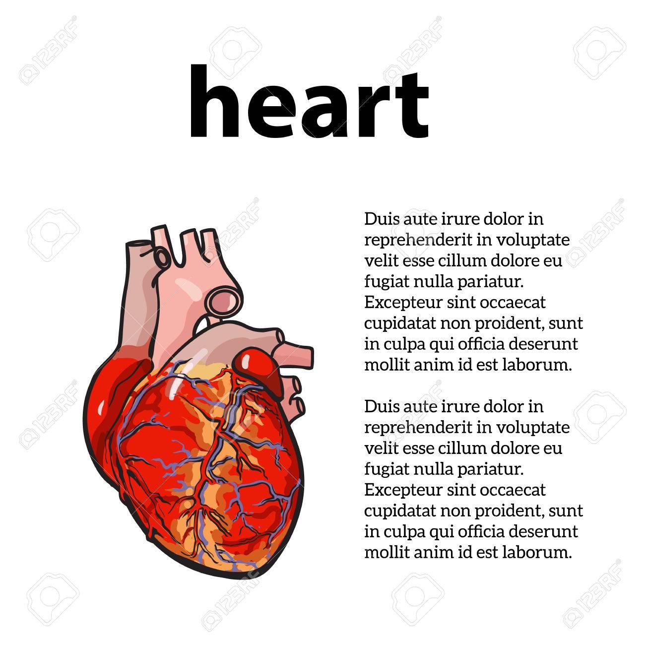 Das Konzept Der Herzkrankheit Mit Informationen über Herzkrankheit ...