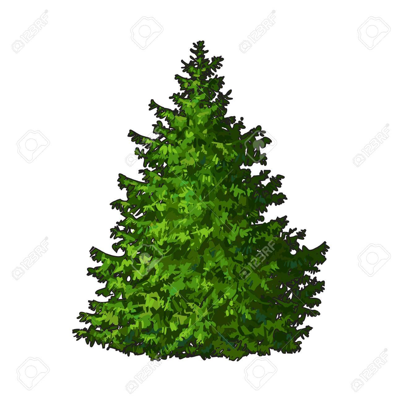 Fluffy Christmas Tree With No Decorations, Sketch Style Vector ...