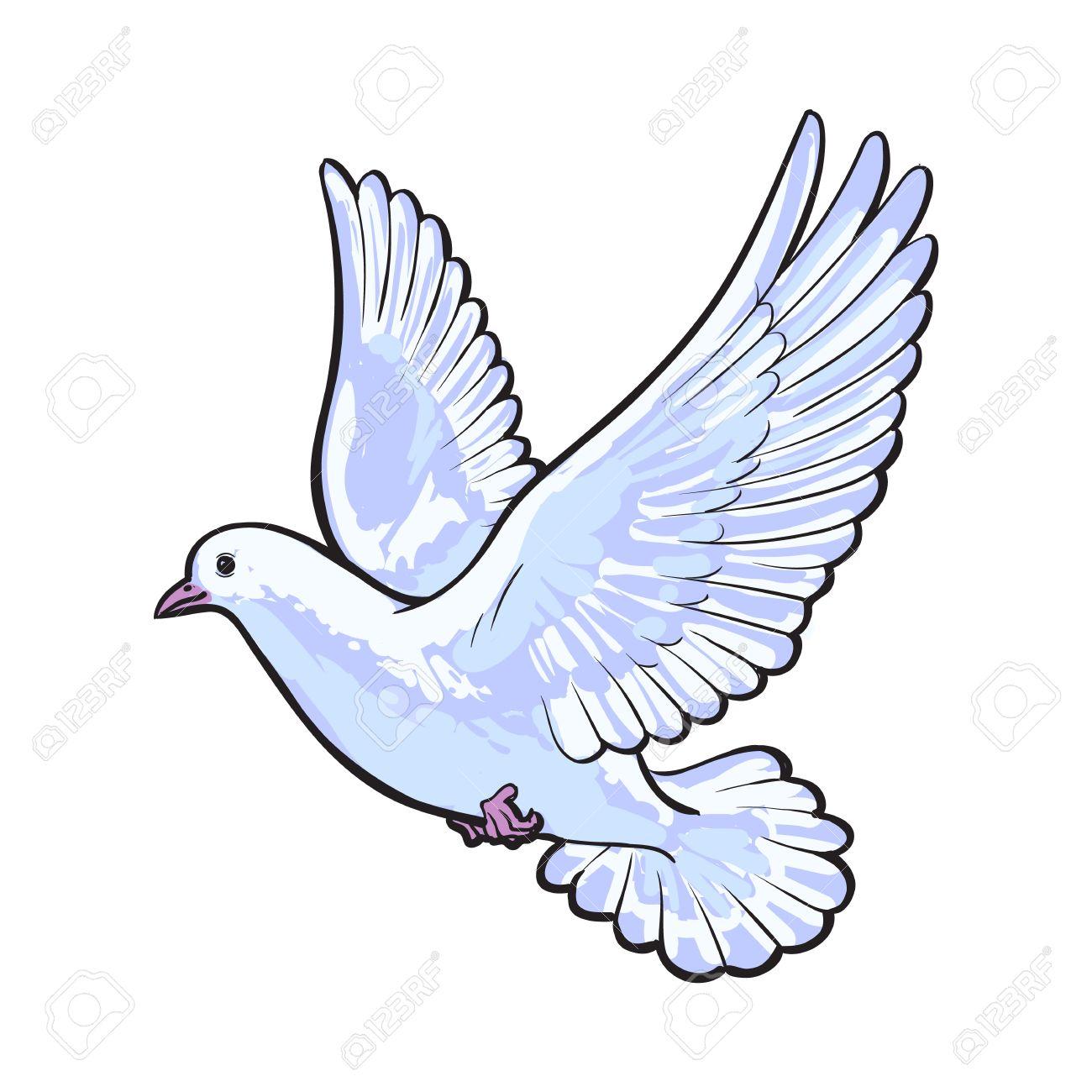 Dessin Libre vol libre colombe blanche, croquis style vecteur illustration isolé