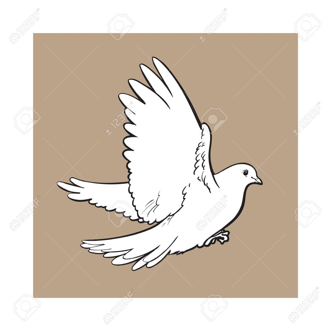free flying white dove sketch style vector illustration isolated on brown background realistic hand