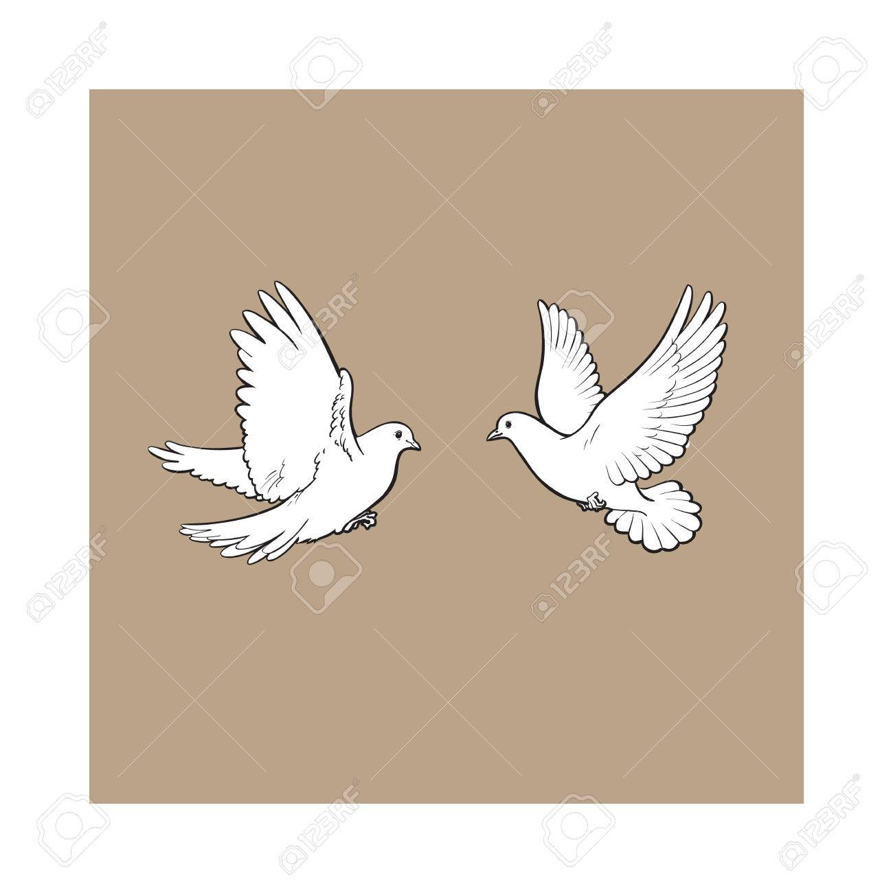 Two Free Flying White Doves Sketch Vector Illustration Isolated