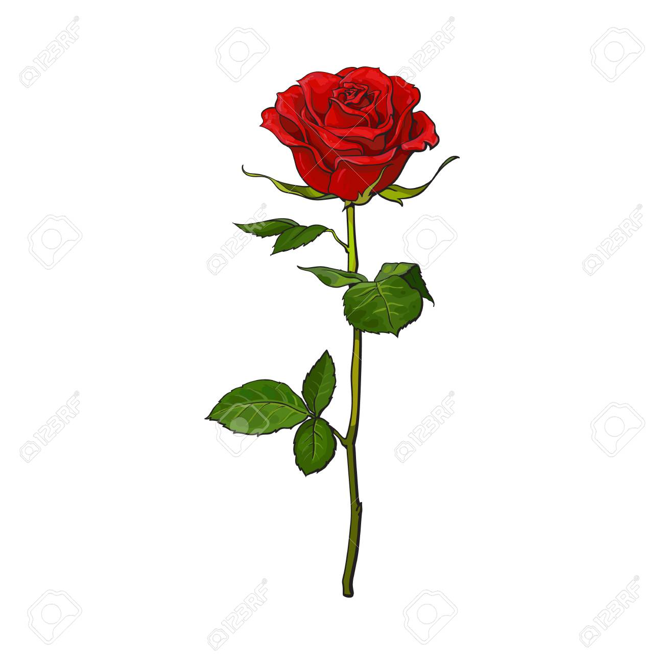 De Color Rojo Oscuro Flor De Color Rosa Rubí Con Hojas Verdes
