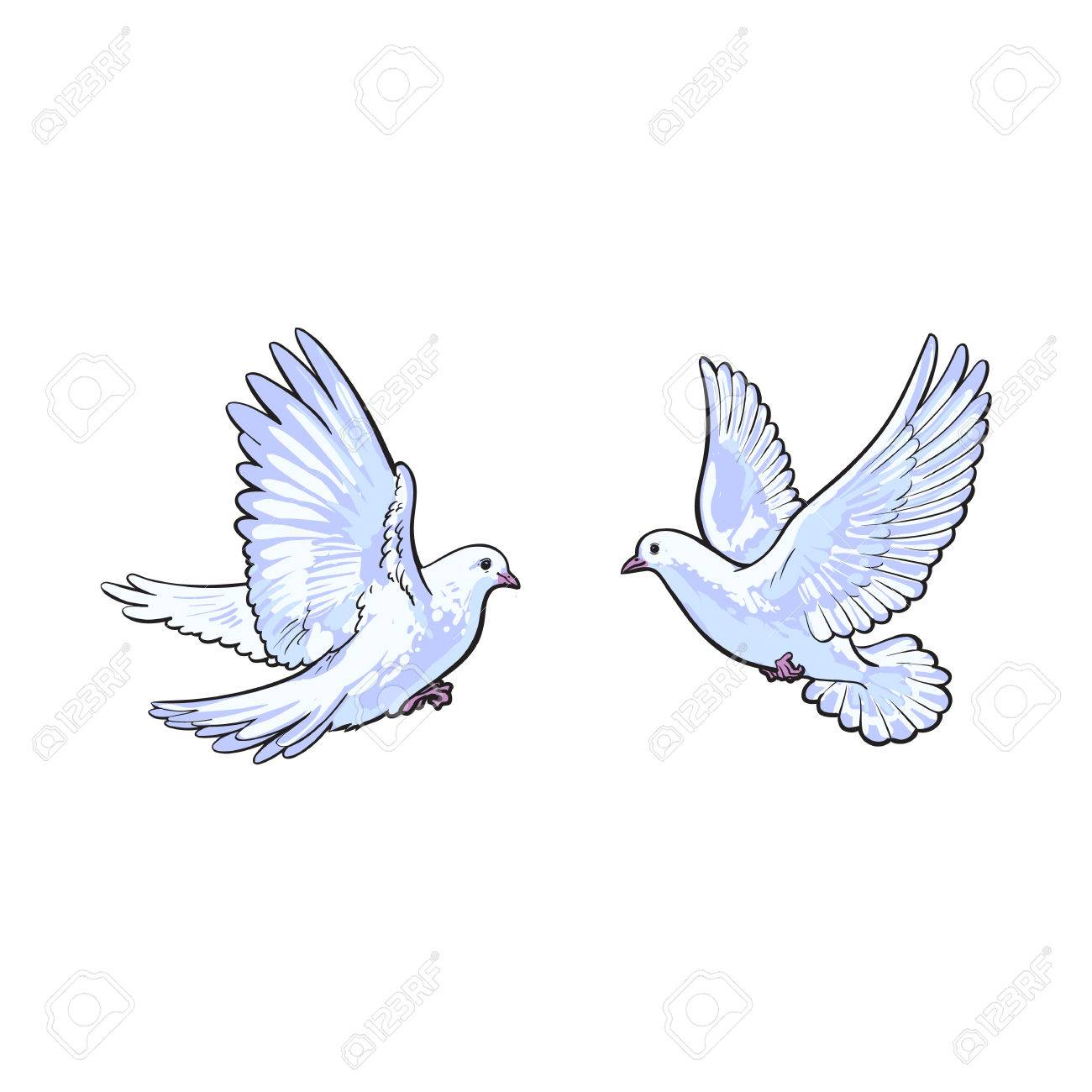 Dos Palomas Blancas Volando Libres Ilustración Vectorial Boceto