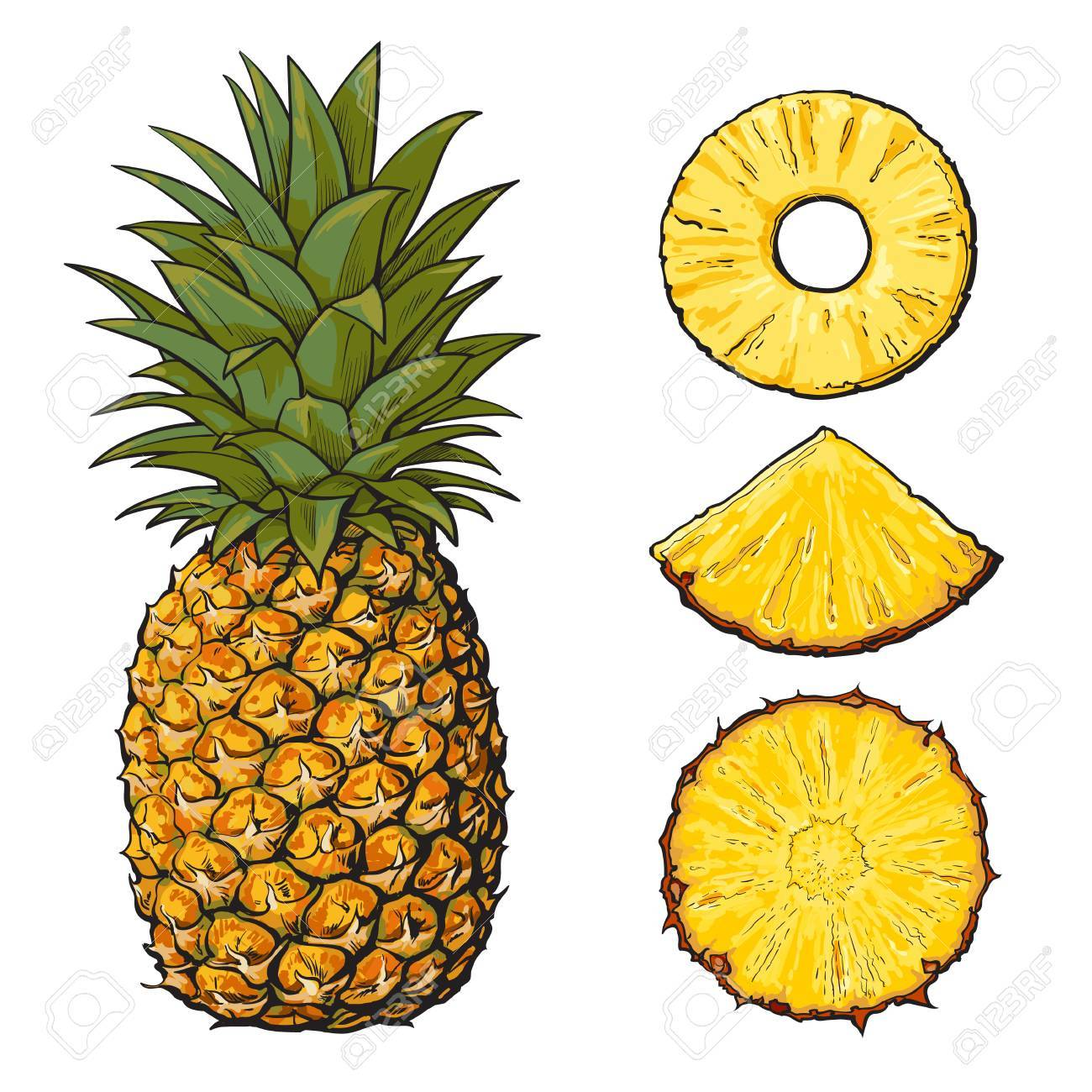 whole pineapple and three types of slices round peeled unpeeled