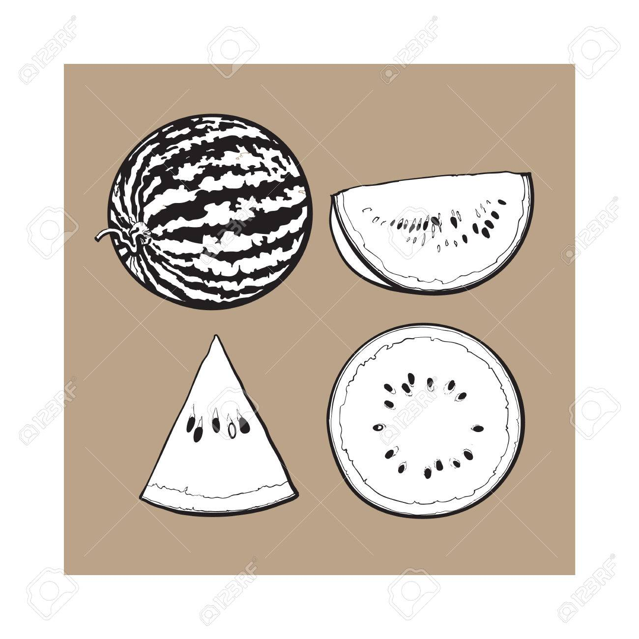 Black and white whole half quarter and slice of ripe watermelon