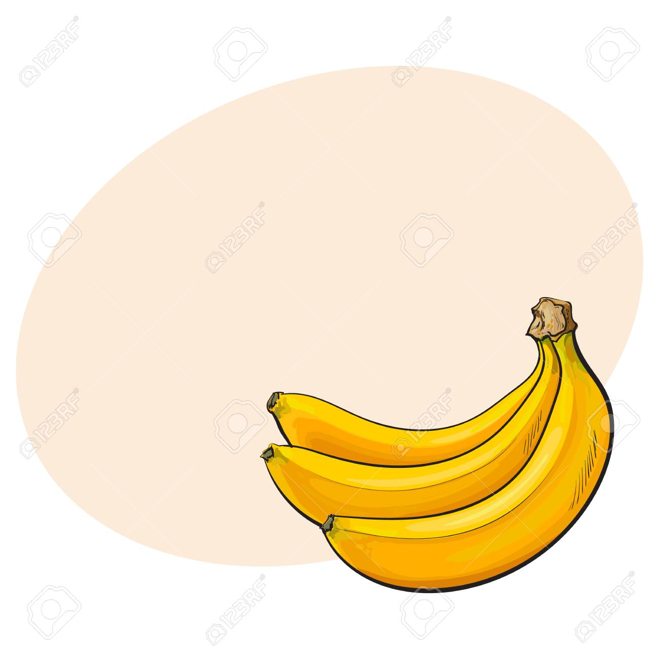 Bunch Of Three Unopened Unpeeled Ripe Bananas Sketch Style Vector Illustration Isolated With Place