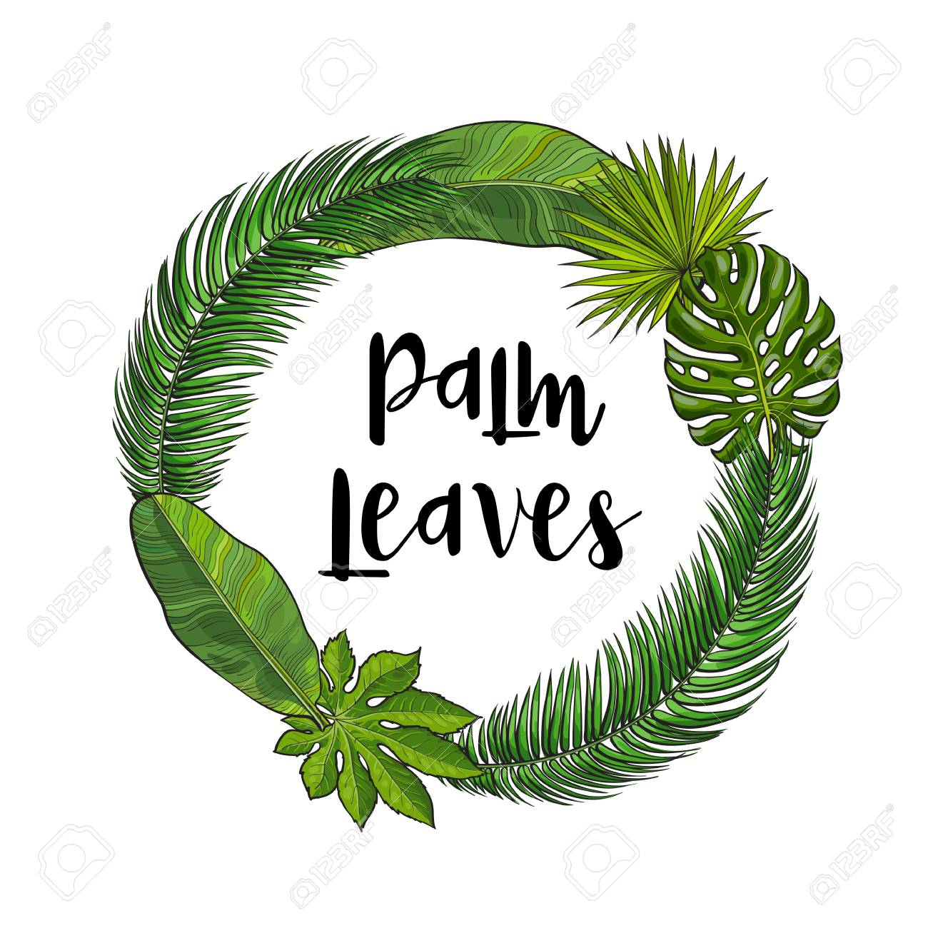 Round Frame Of Tropical Palm Leaves With Place For Text Sketch Royalty Free Cliparts Vectors And Stock Illustration Image 72175611 Illustrated palm tree leaves silhouettes. round frame of tropical palm leaves with place for text sketch
