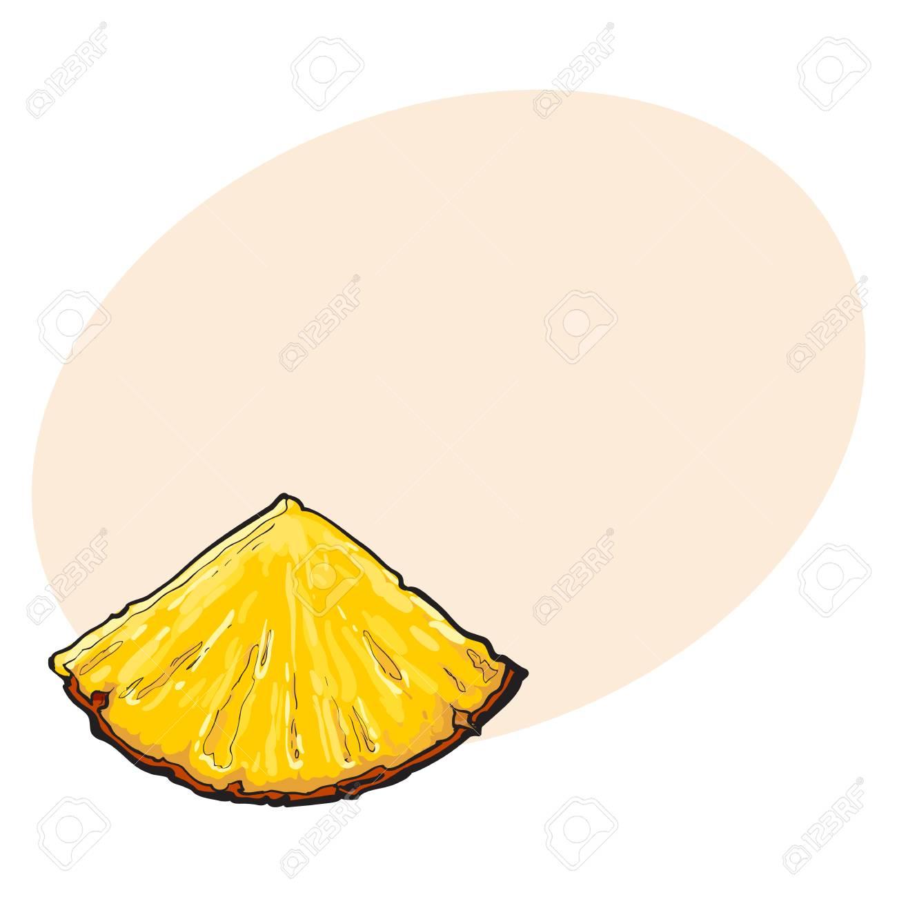 Unpeeled Pineapplewedge Trojuhelnikovy Rez Sifde Pohled Skicovy