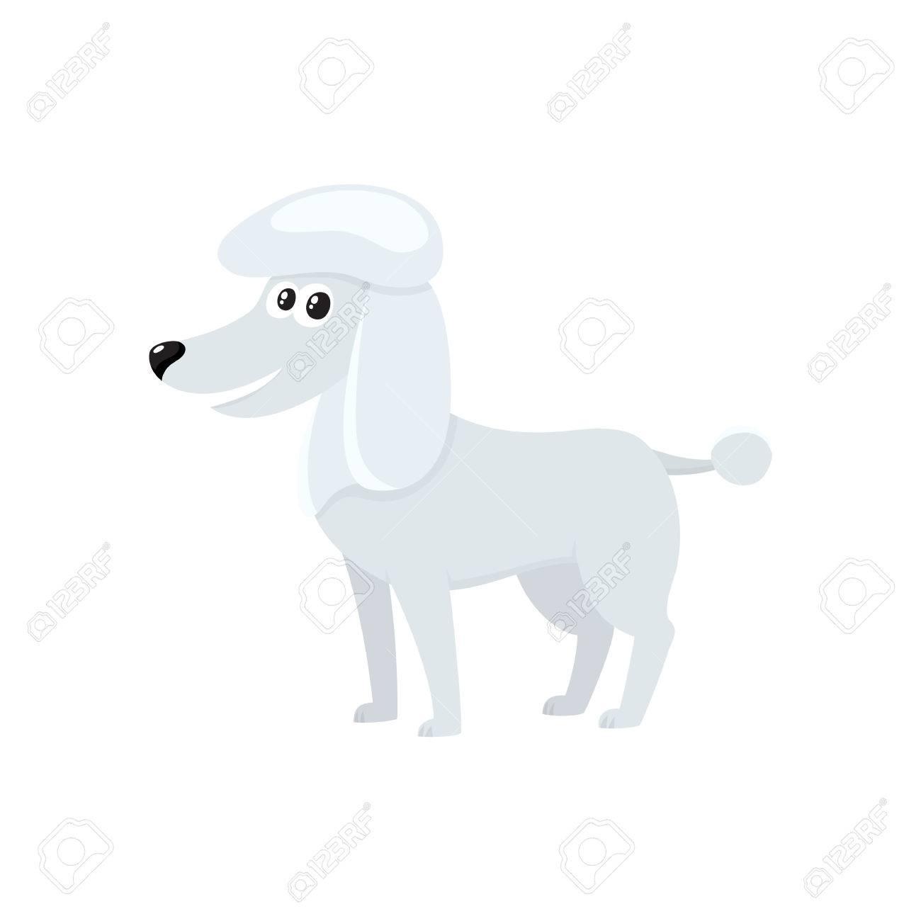Cute Bien Preparado Perro De Raza Blanca De Perro De Raza Blanca