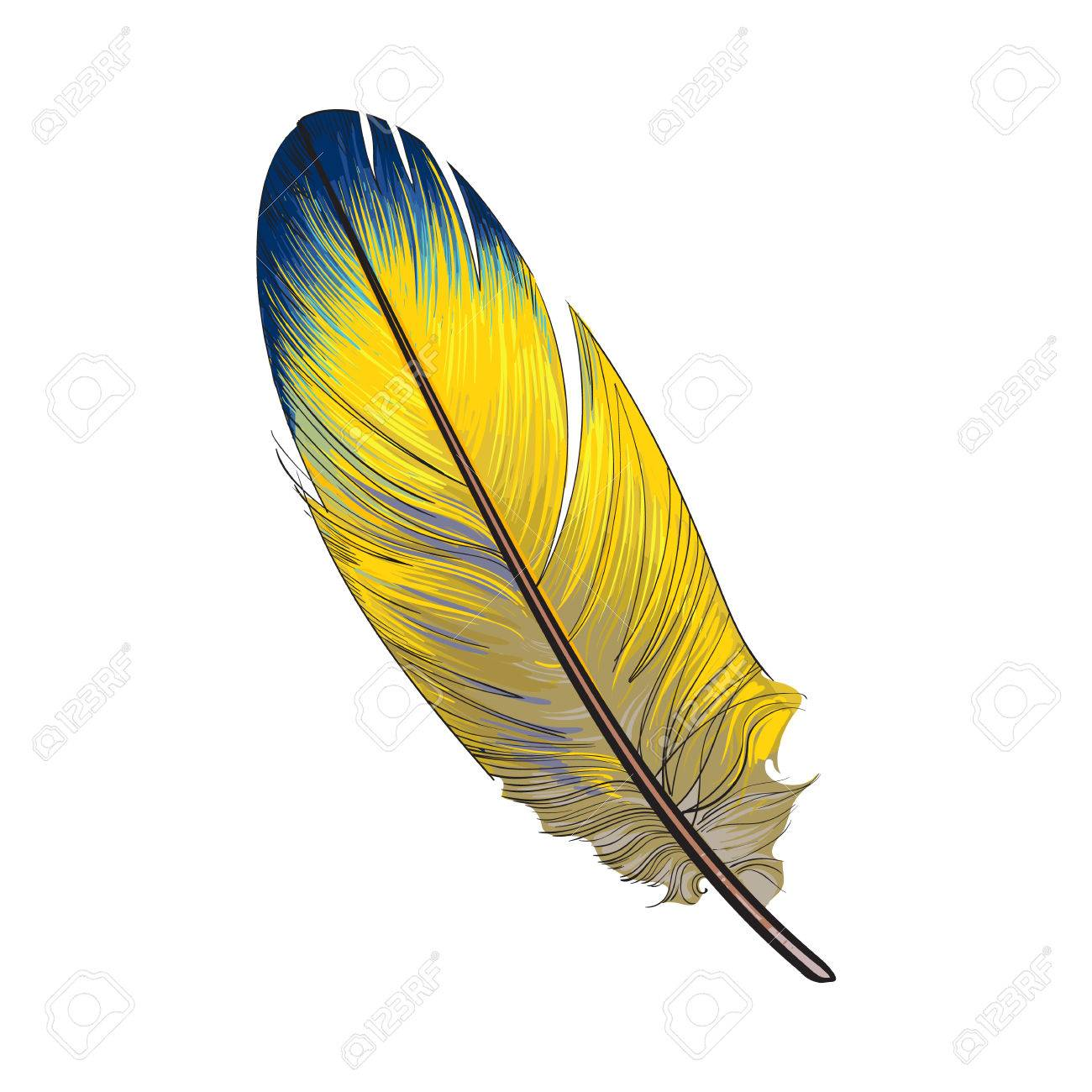 Smoth Dessine Main Tropical Jaune Et Bleu Plume D Oiseau Exotique