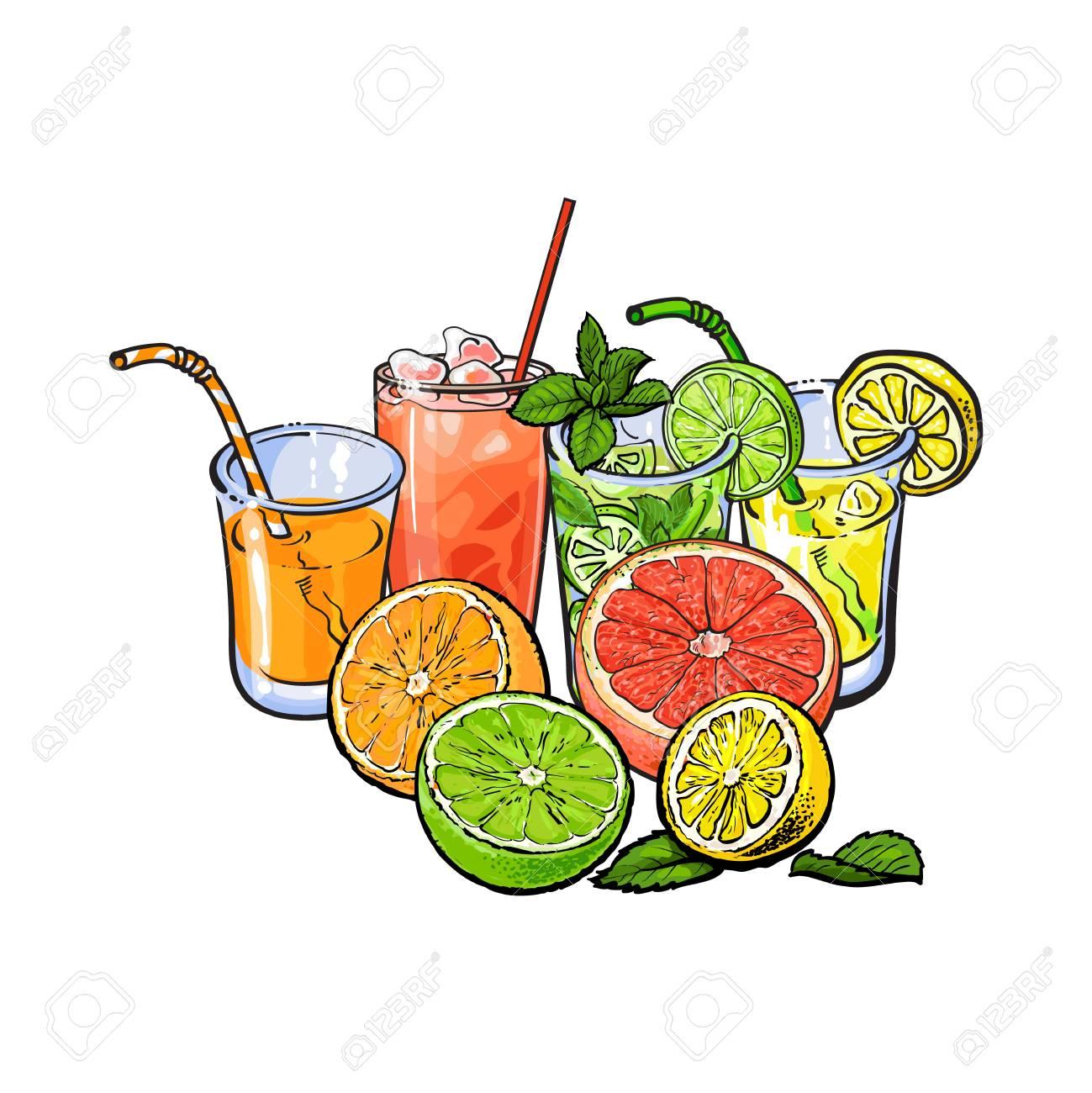 Orange Pamplemousse Citron Vert Jus De Citron Et Fruits Illustration Vectorielle De Croquis Dessinés à La Main Sur Fond Blanc Dessin à La Main
