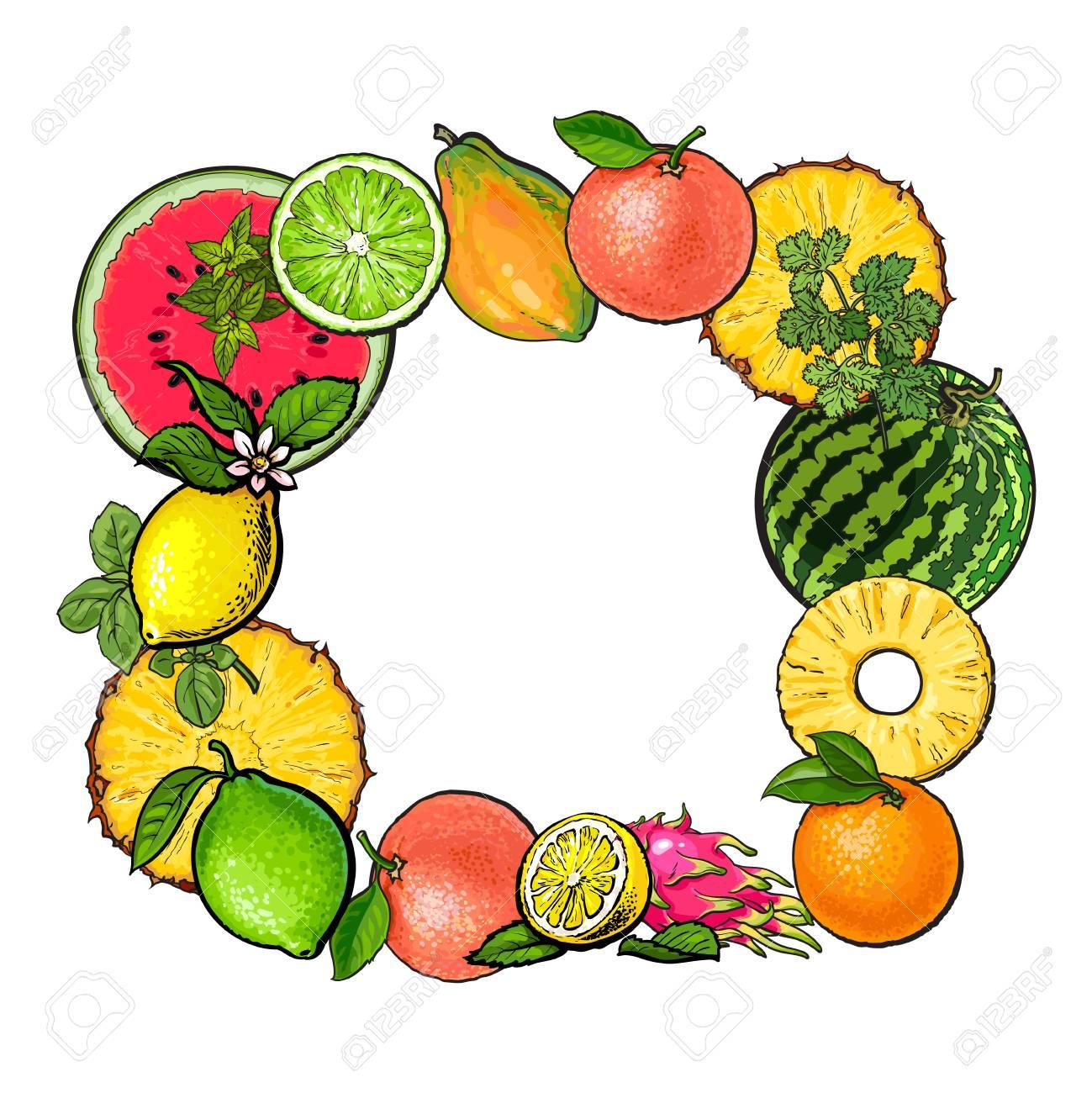 A Fruta Carambola Serve Para Que stock illustration