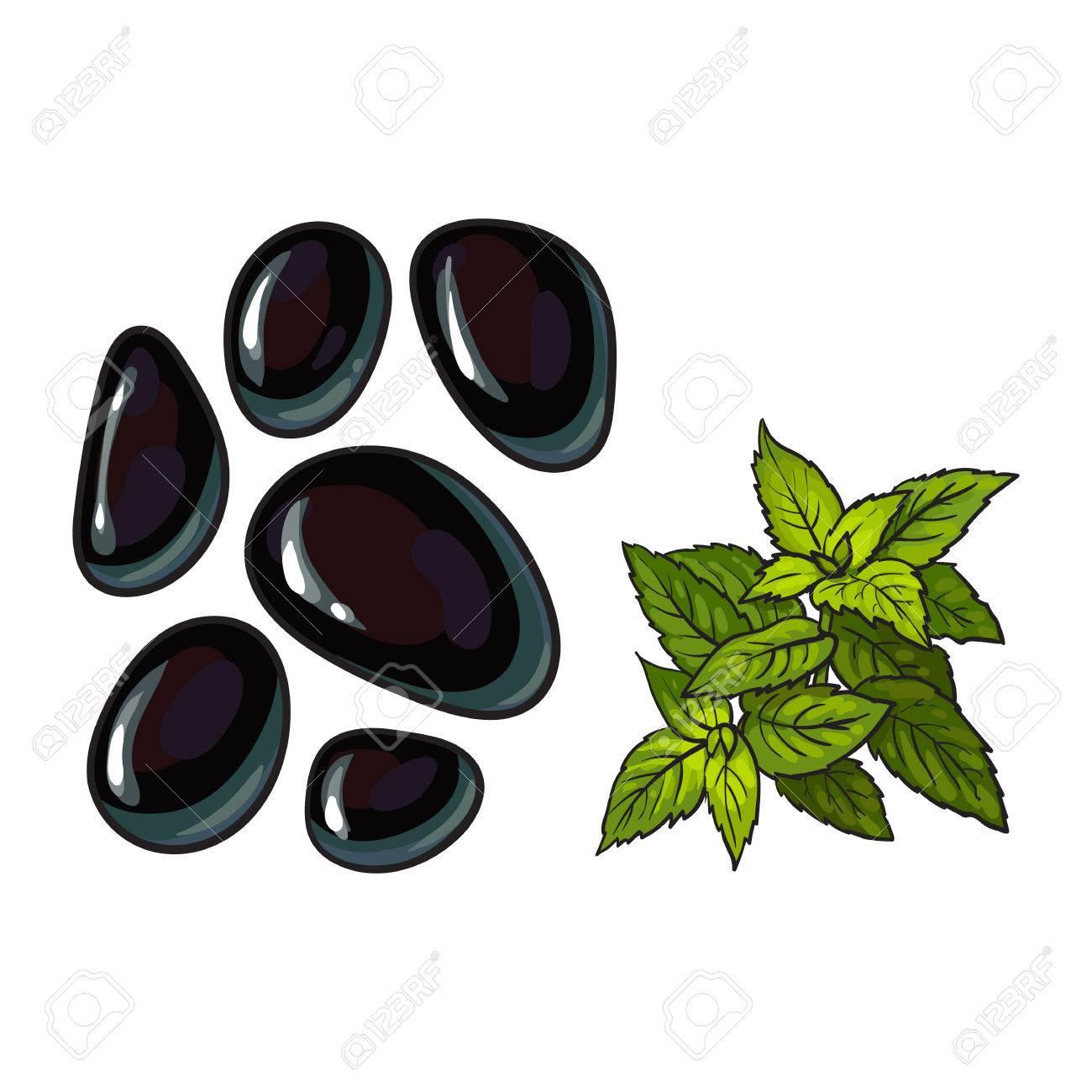 Decoration De Spa dedans pierres de massage au basalte noir et feuilles de menthe, éléments