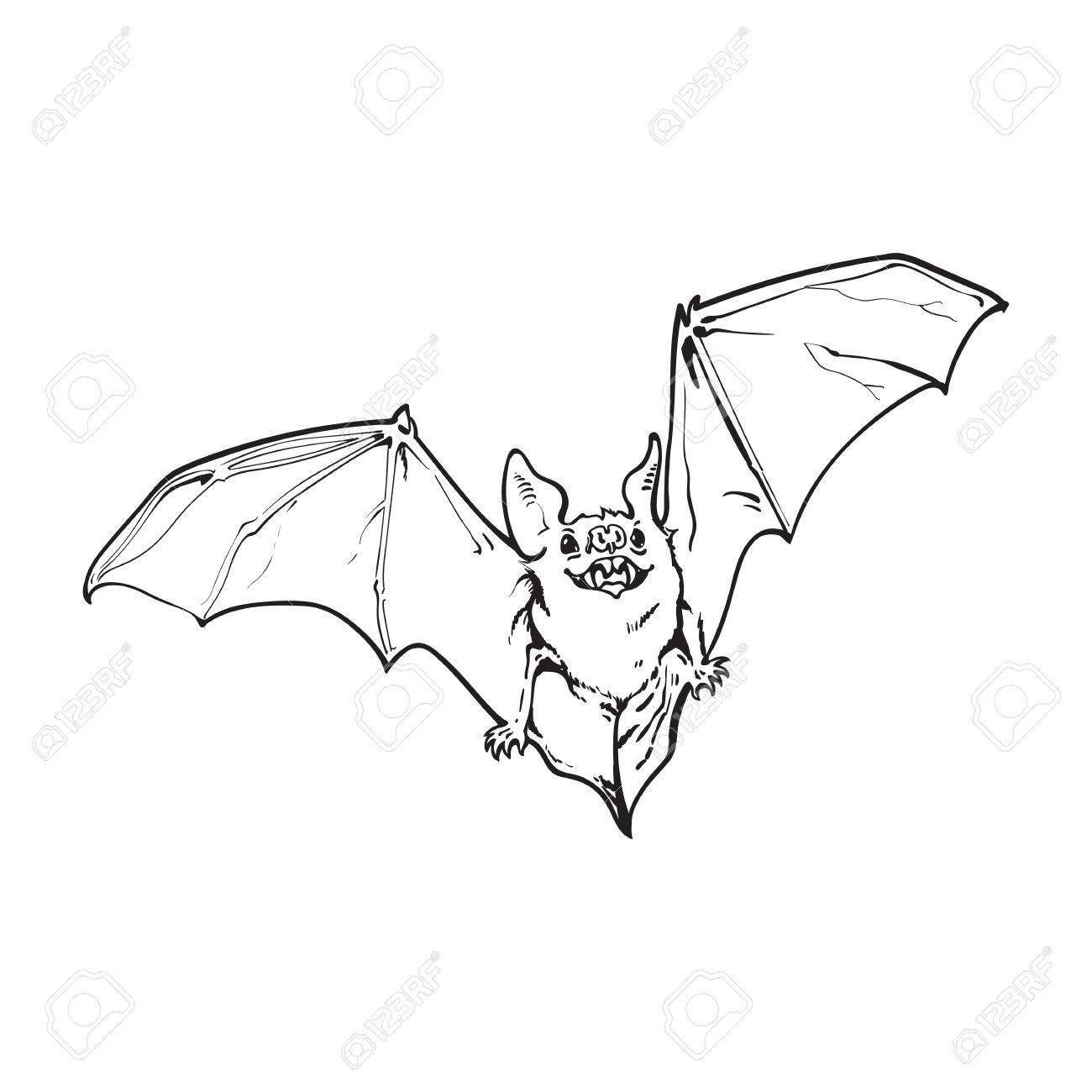 Schwarzweiss-Fliegen Halloween-Vampirsschläger, Skizzenart ...