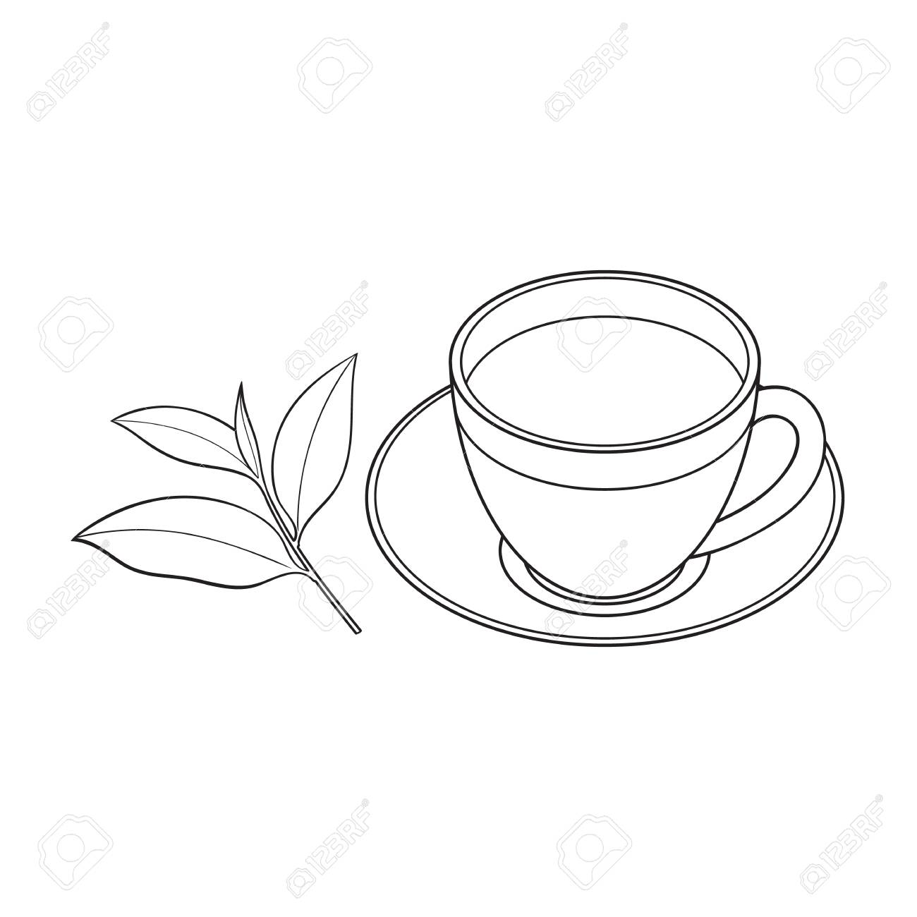 Transparent Glass Cup Saucer And Fresh Tea Leaf Sketch Vector Royalty Free Cliparts Vectors And Stock Illustration Image 84777746