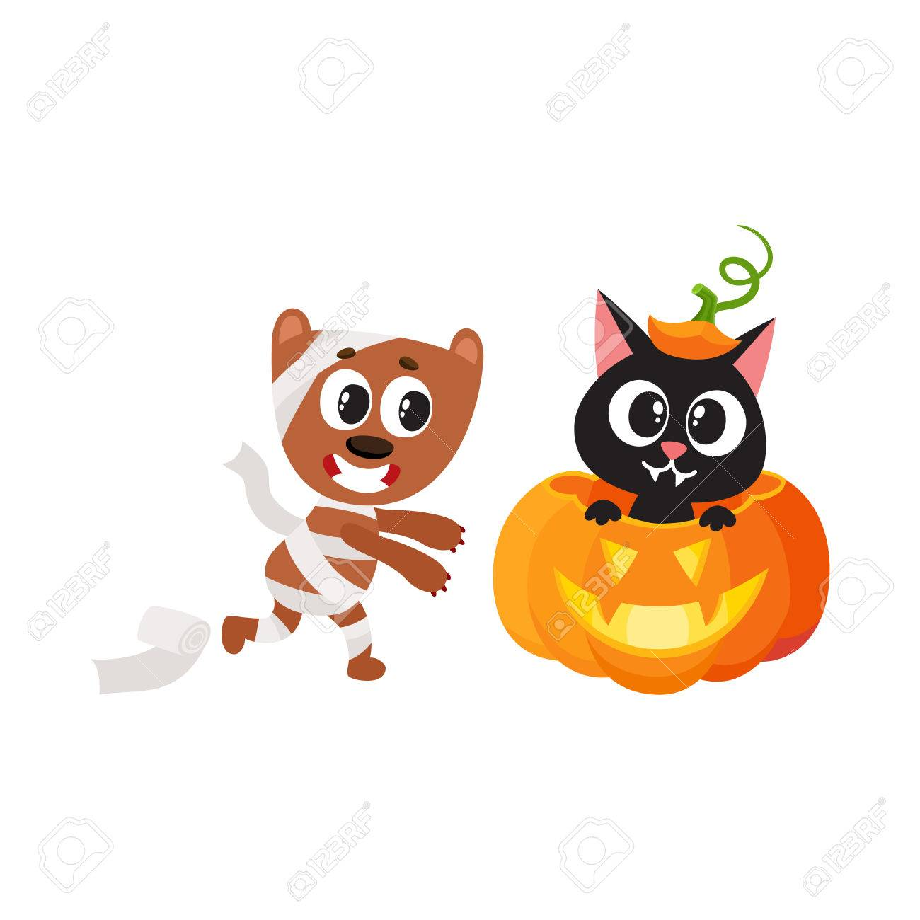 vector flat cartoon funny cute cat sitting at halloween pumpkin with gourd hat with stem on