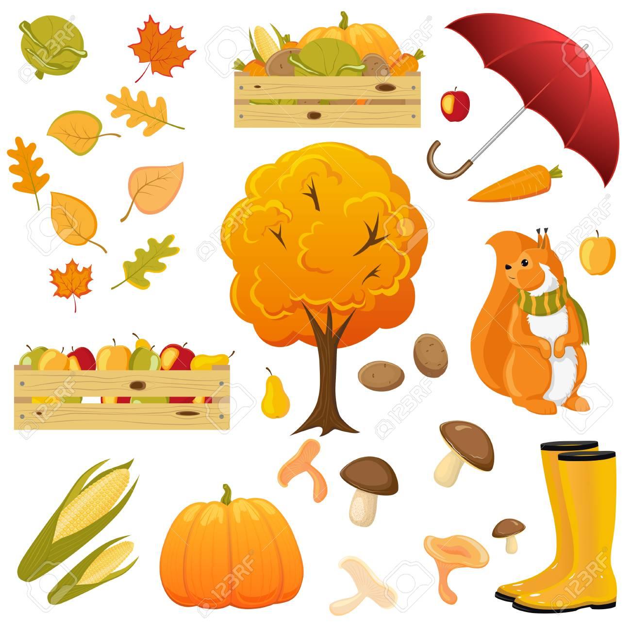 big fall autumn set umbrella rain boots squirrel fruits