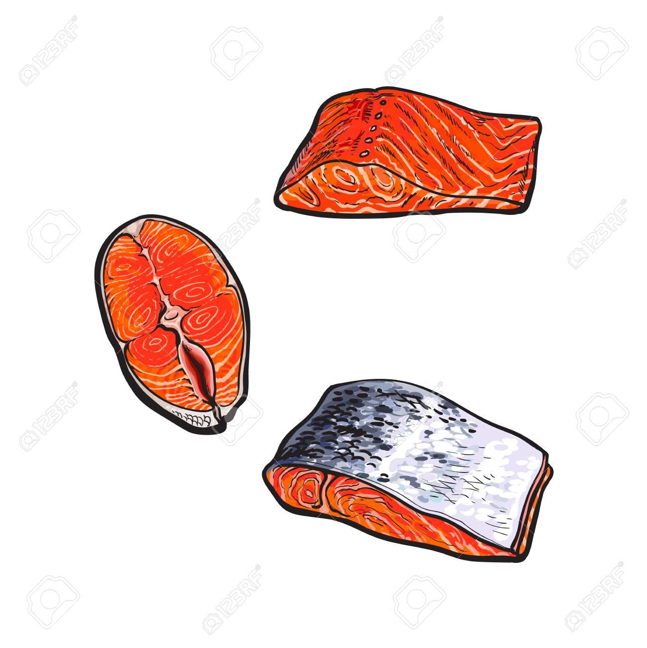Estilo De Dibujo Vectorial Filete De Filete De Carne De Pescado De