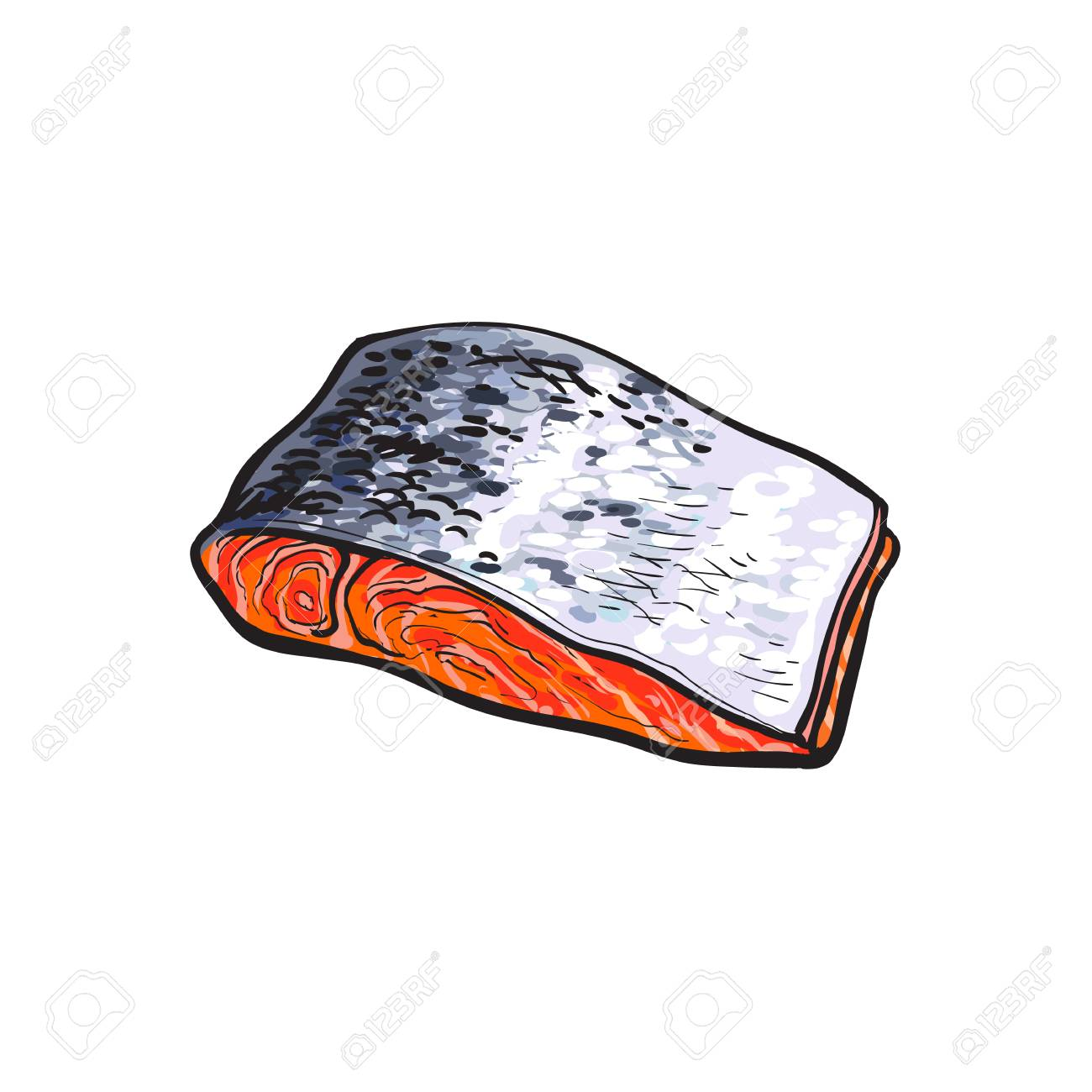 Vector Sketch Cartoon Style Sea Red Salmon Fish Meat Fillet Steak