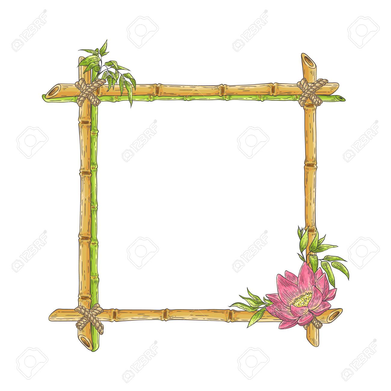 Vector bamboo frame with lotus flower, abstract green plants and leaves. Traditional chinese, eastern culture decoration with copy space. Sketch wooden sicks binded by rope. Asian design background. - 118426165