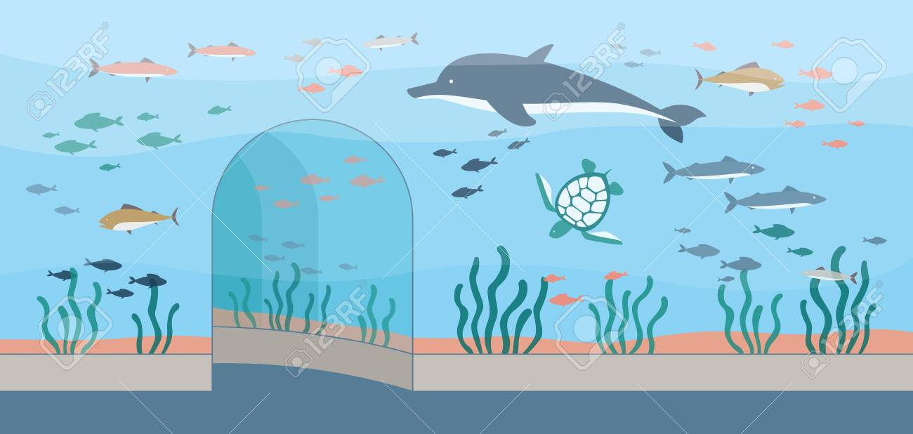 Oceanarium Or Aquarium Interior Background With Cartoon Characters Royalty Free Cliparts Vectors And Stock Illustration Image 154144757