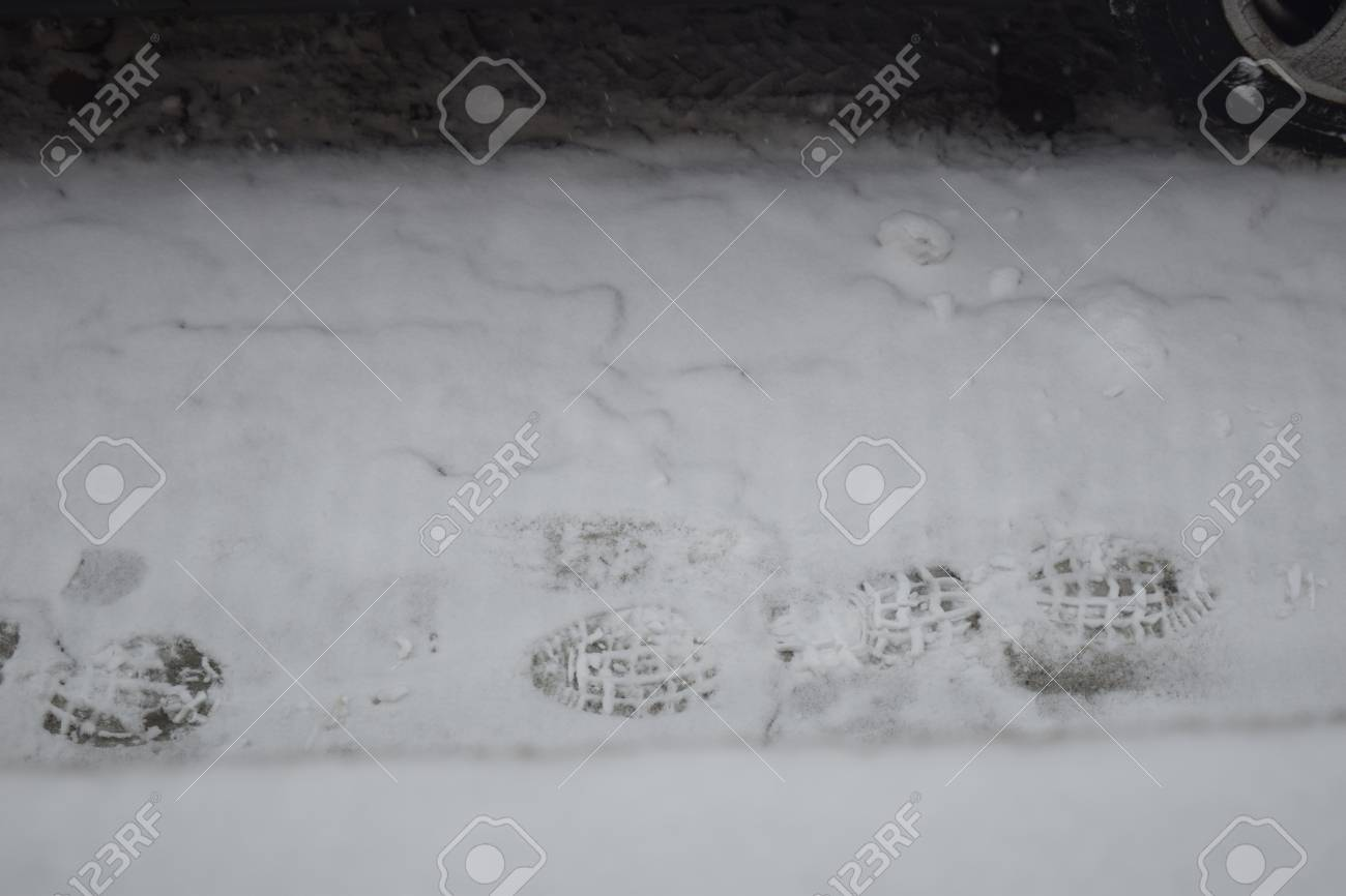Footprints in the snow in my backyard Stock Photo - 51356091