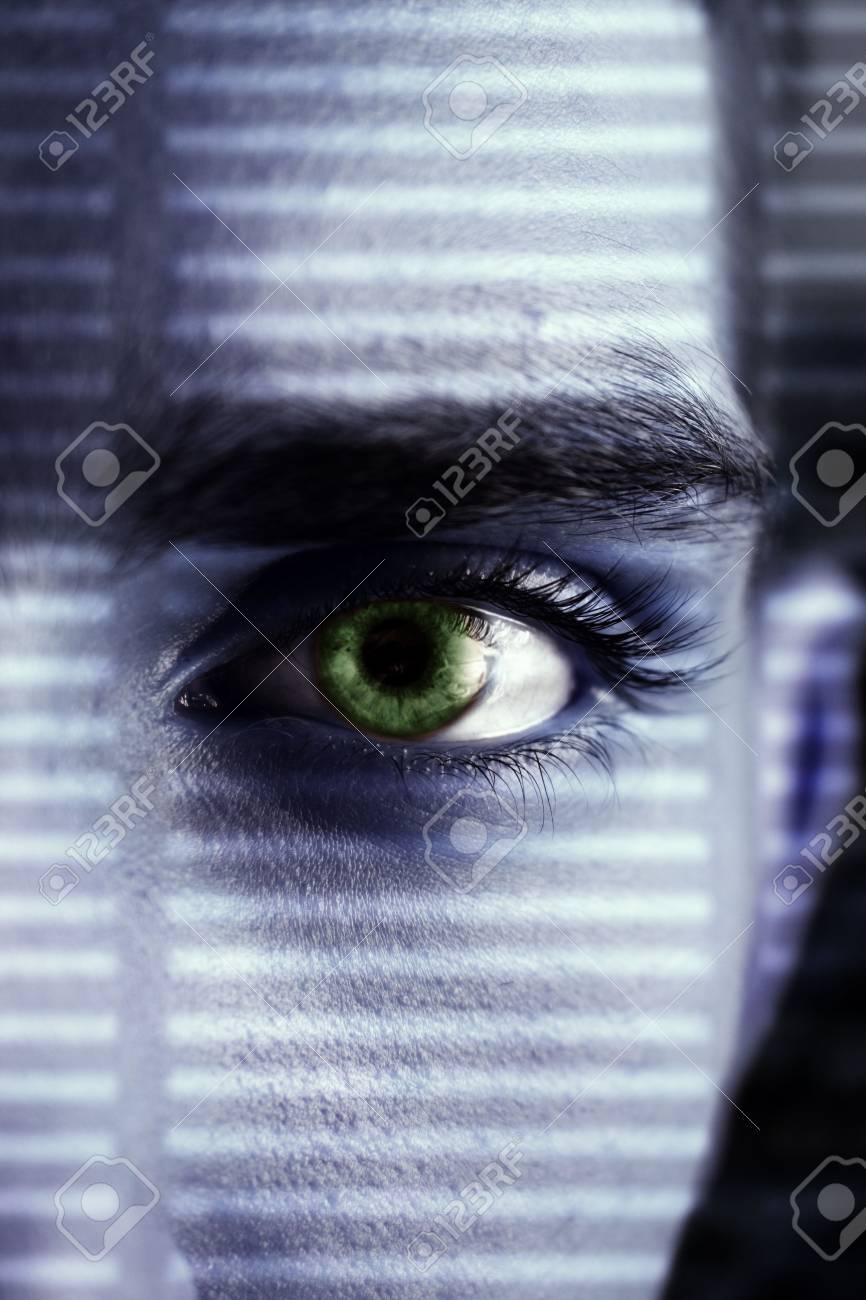eye wacher looking through a lattice of a shadow Stock Photo - 2135416