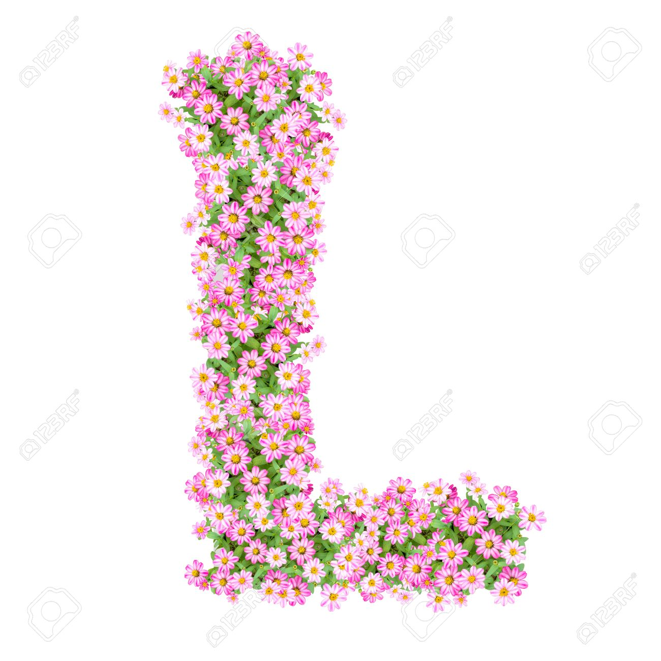 Letter L Alphabet With Zinnia Flower ABC Concept Type As Logo