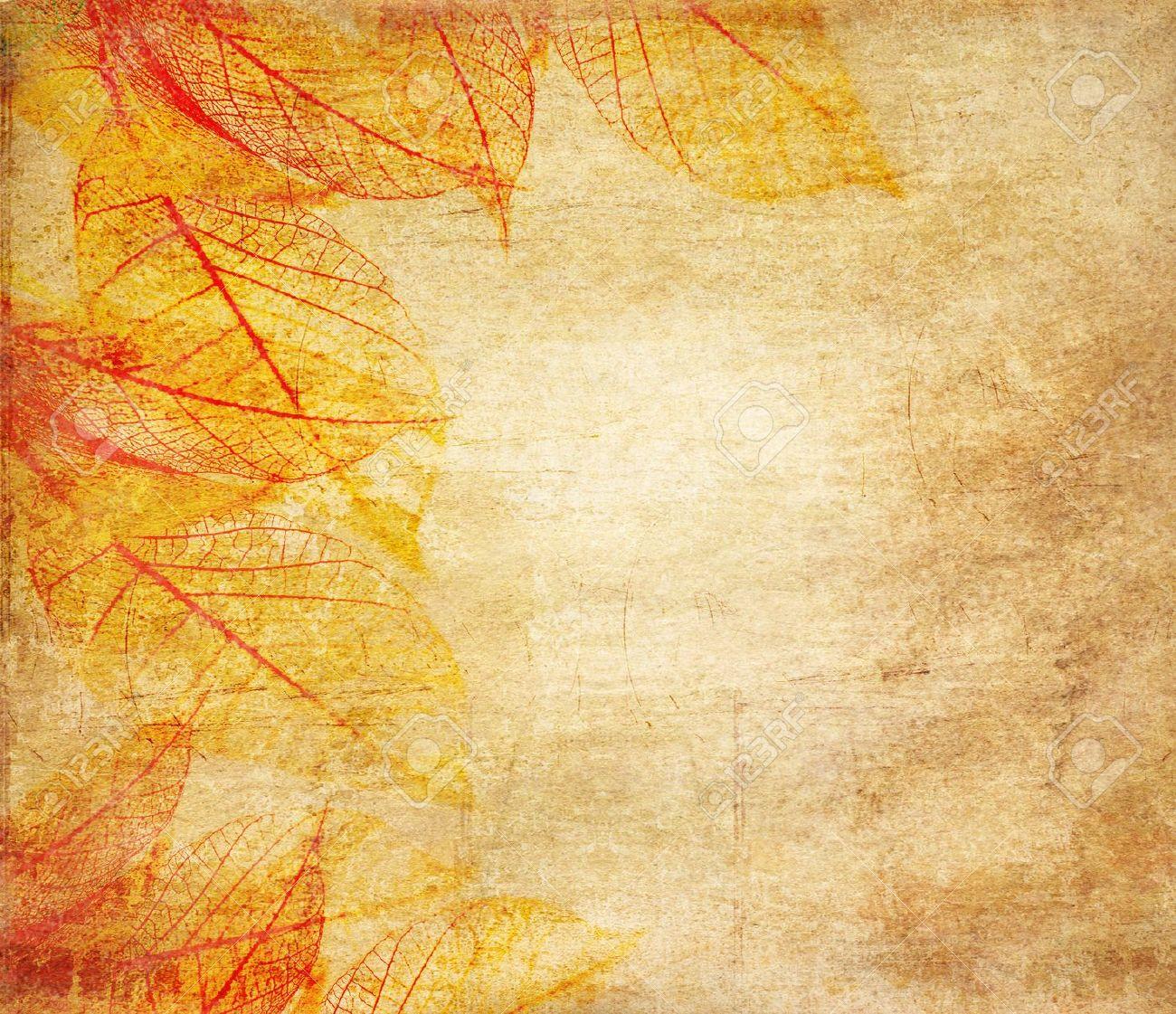 Skeleton leaves grunge  background Stock Photo - 10472286