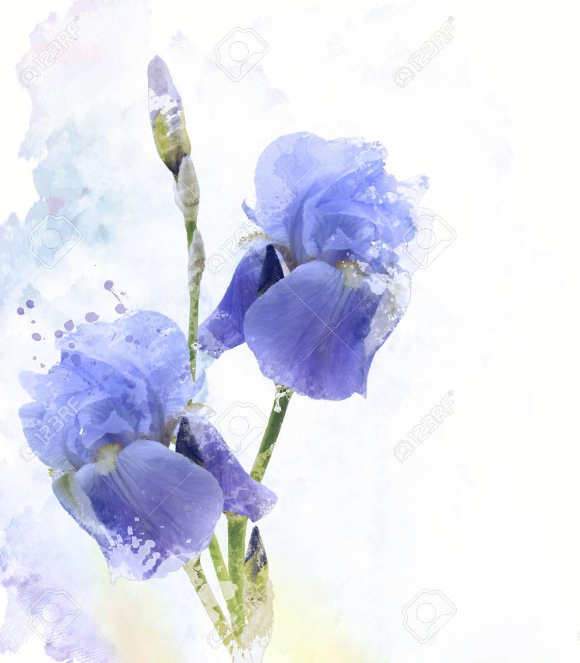 Digital painting of iris flowers stock photo picture and royalty digital painting of iris flowers stock photo 40984719 izmirmasajfo