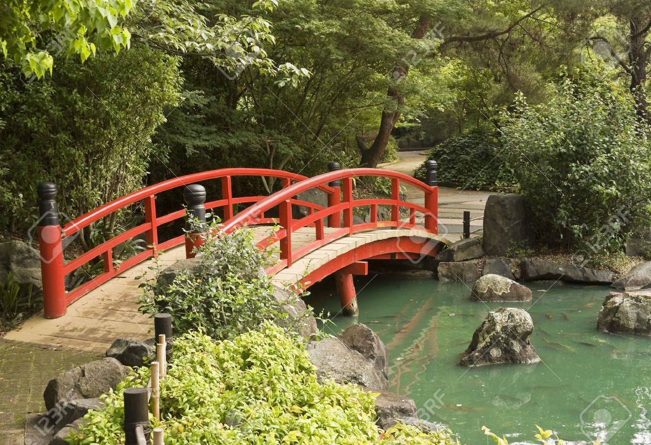 a red wooden bridge over a pond in a japanese garden stock photo 11930203 - Red Japanese Garden Bridge