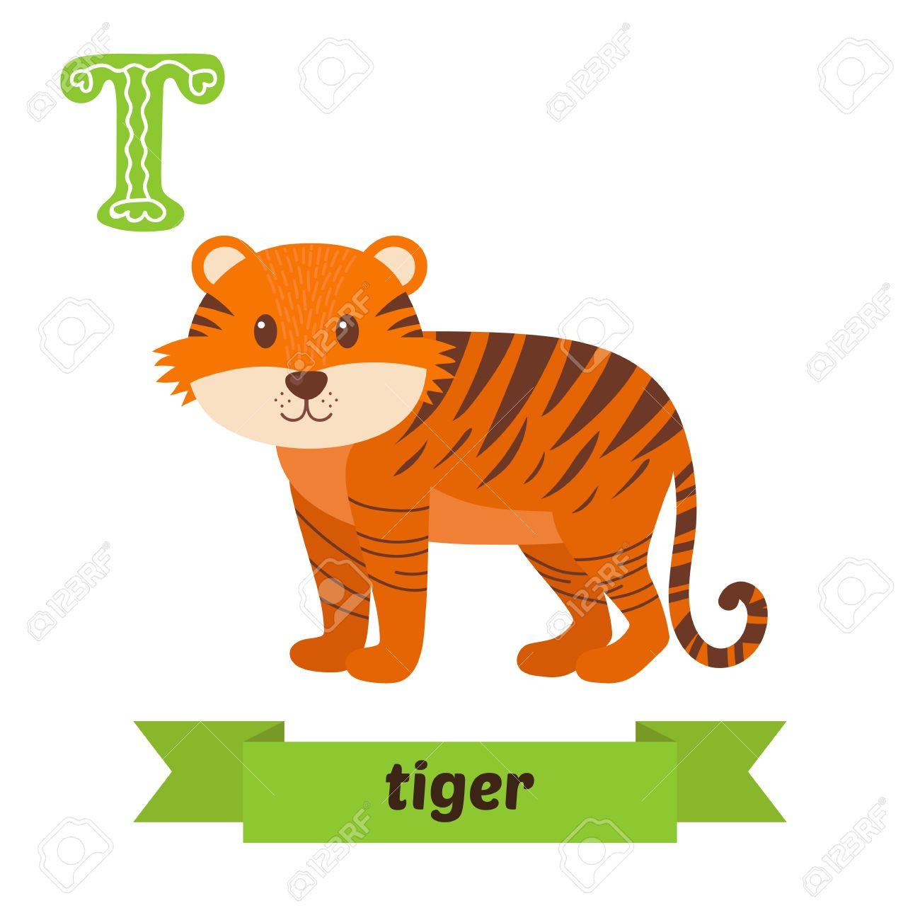 Tigre Letra T Lindo Alfabeto De Los Niños De Los Animales En El Vector Los Animales Divertidos Dibujos Animados Ilustración Vectorial