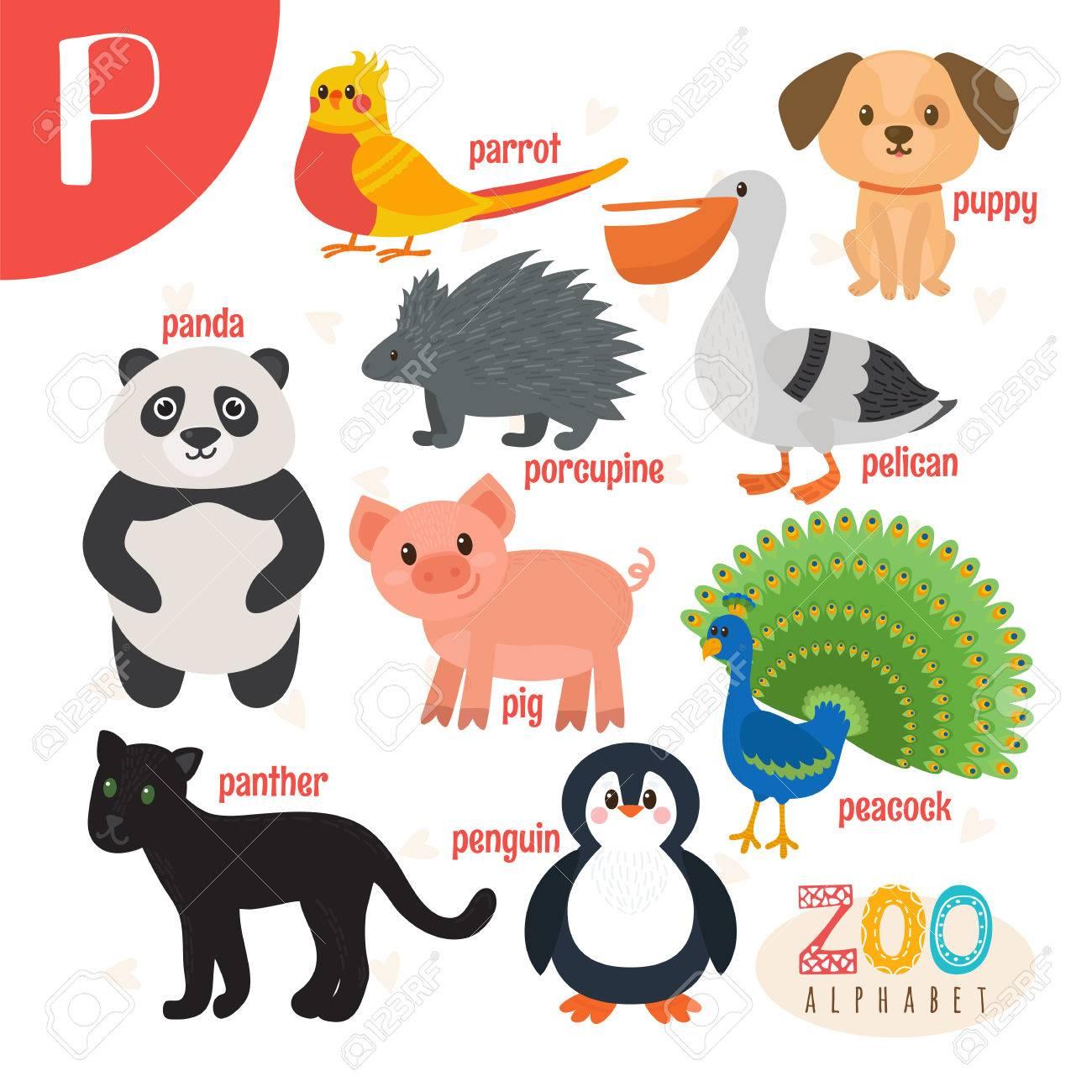 Letter P. Cute Animals. Funny Cartoon Animals ABC Book
