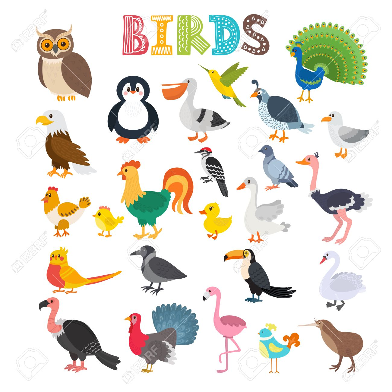 illustration of different kind of birds cute cartoon birds