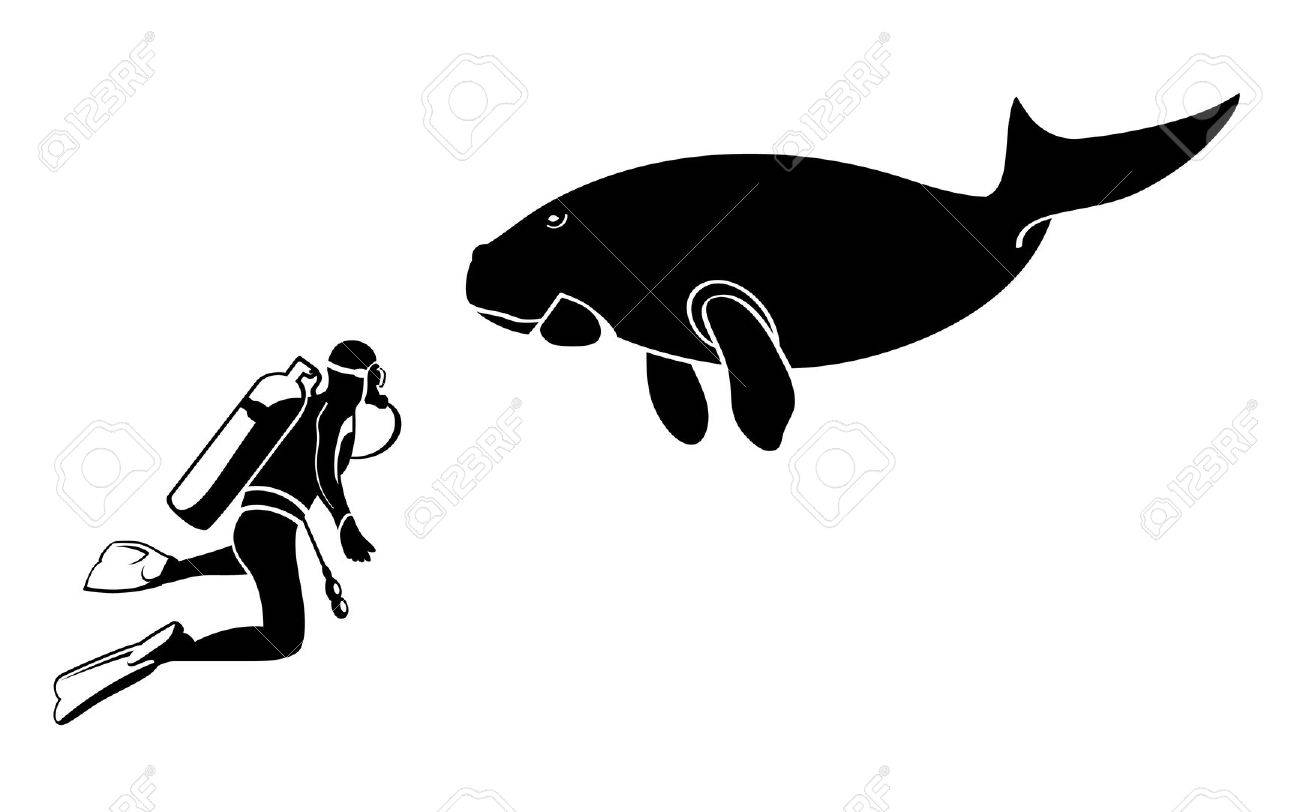 Scuba diver and dugong contour silhouettes isolated Stock Vector - 8384028