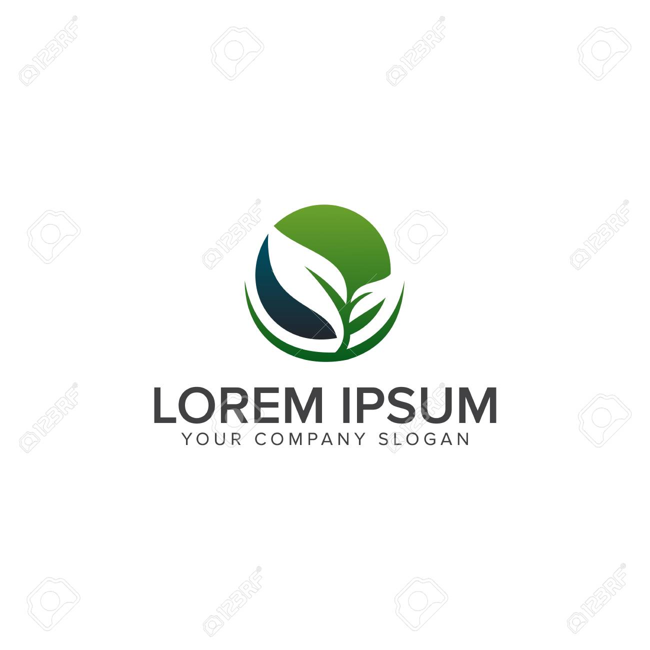 leaf eco green logo design concept template - 82073421