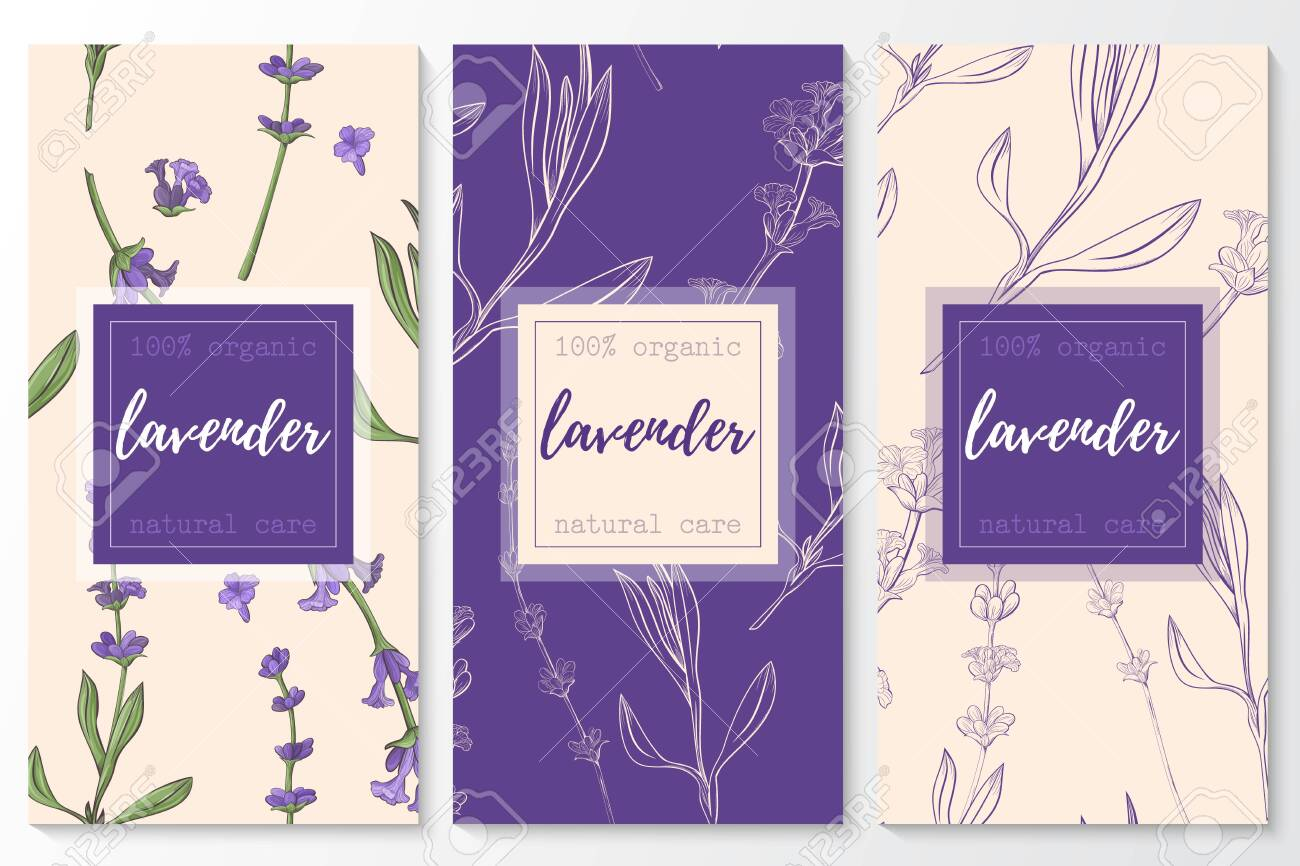 Vector set of lavender natural cosmetic vertical banners on a seamless pattern. - 143226167