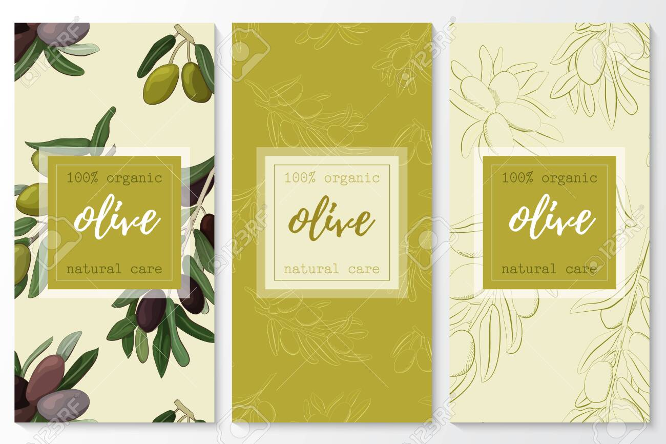 Vector set of olive natural cosmetic vertical banners on a seamless pattern. - 143732975